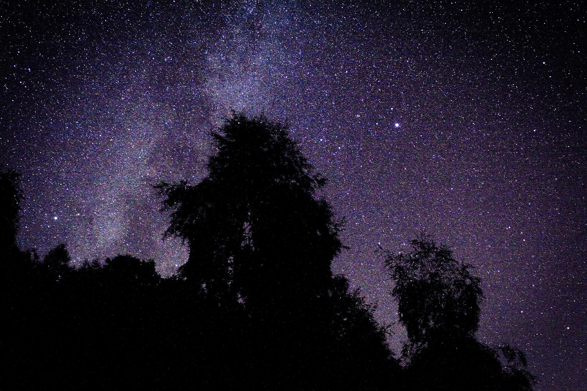 Stars by Steve Flanagan