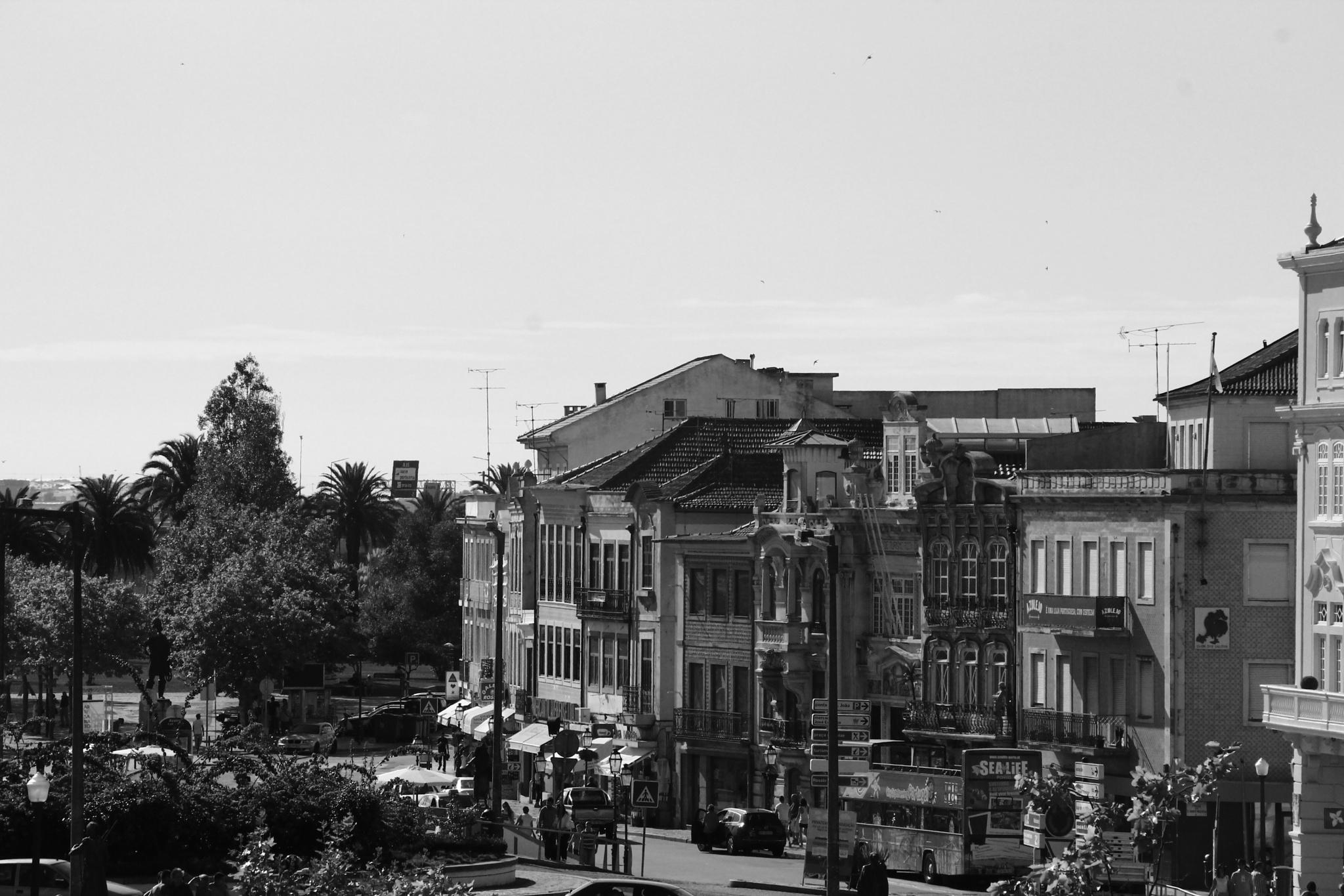 Aveiro in Black&White by Niraya