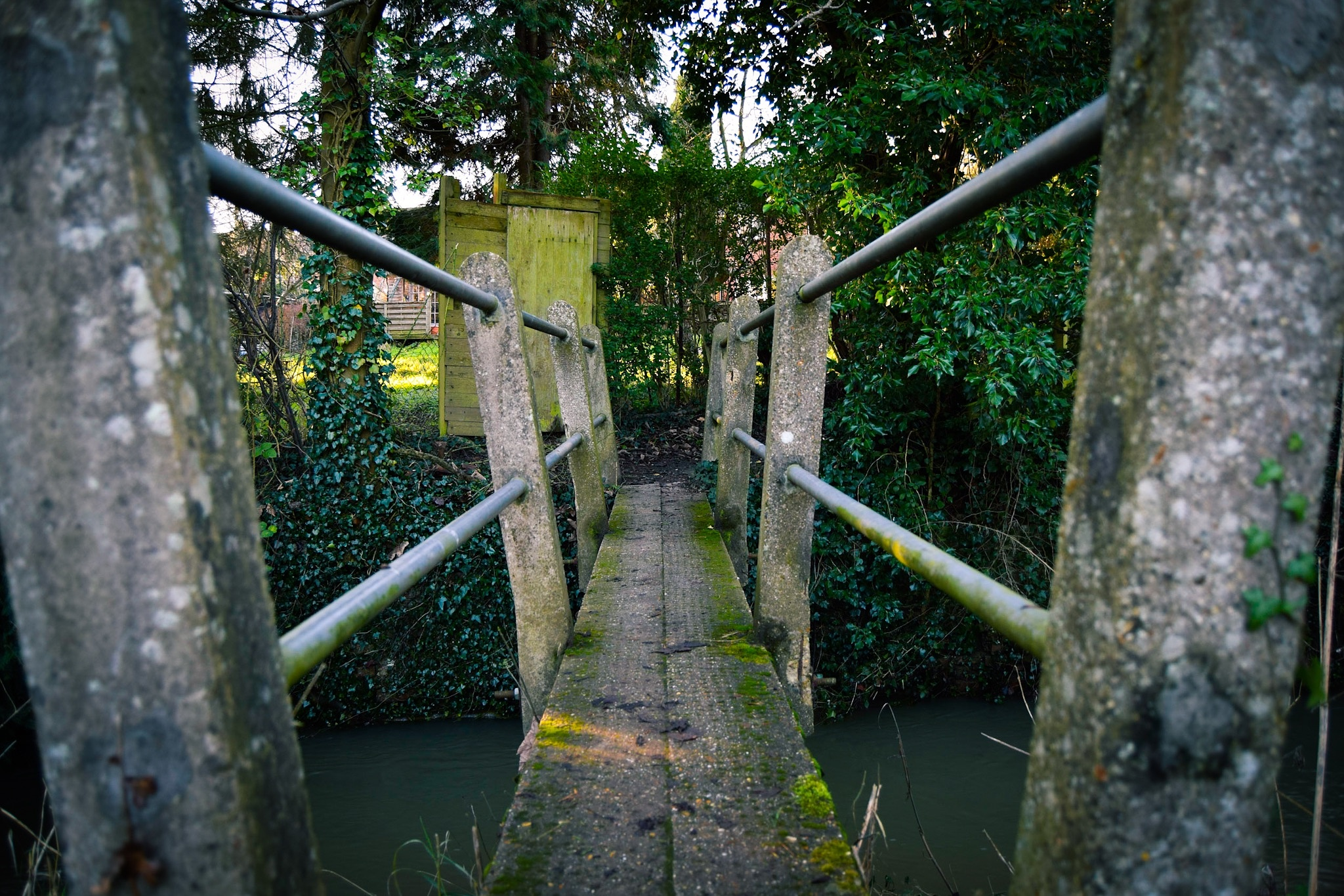 The Woodland Bridge by PhilipOckelford