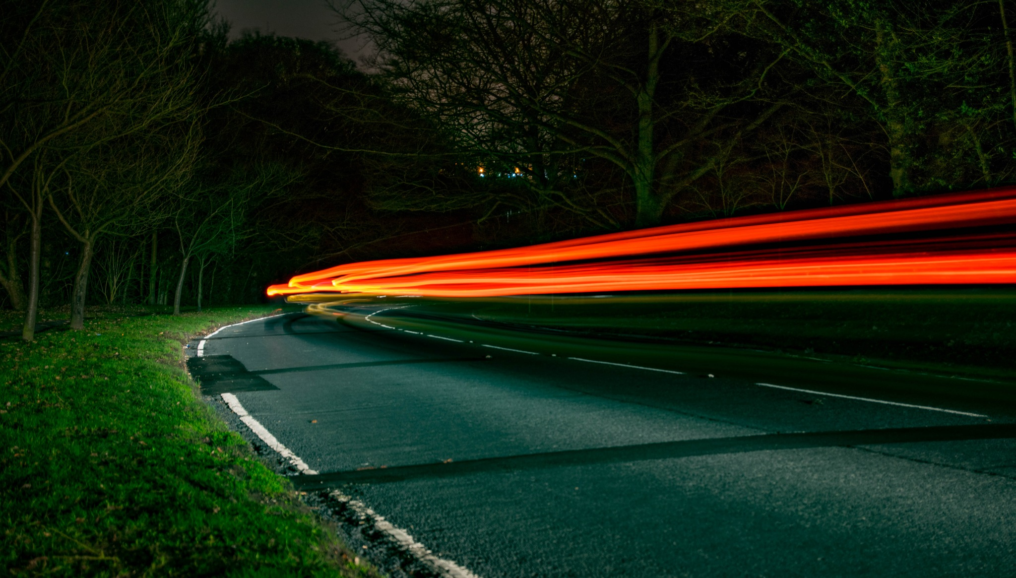 Woodland Light Trails by PhilipOckelford