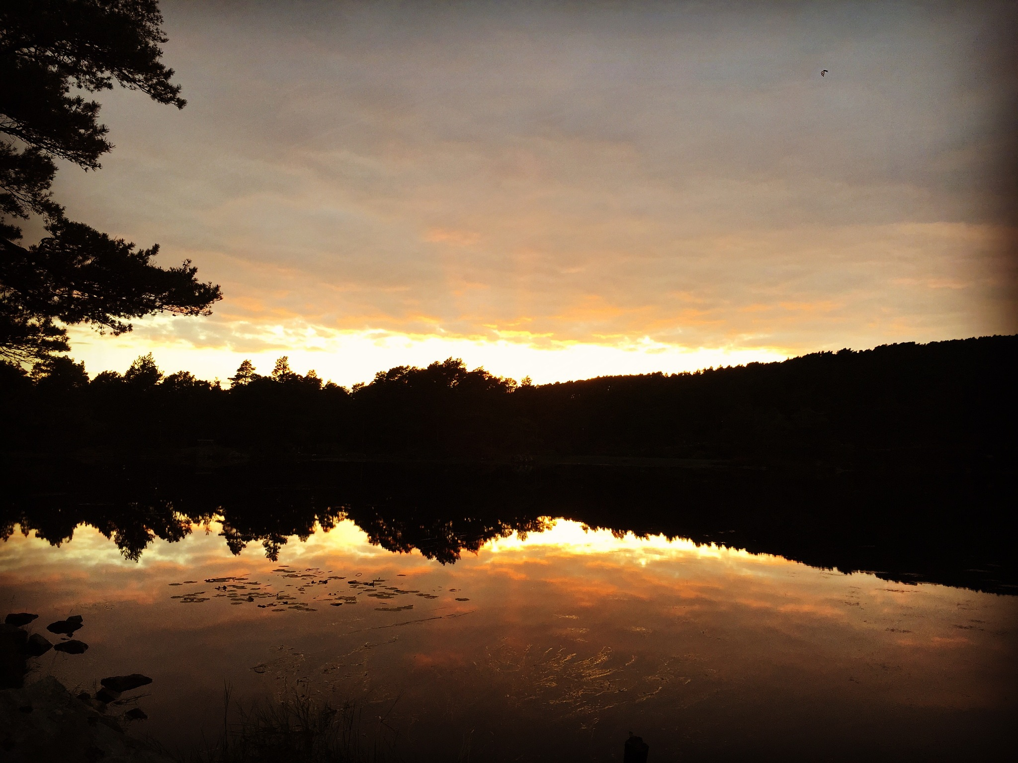 Sunset by Kristin M Rabben
