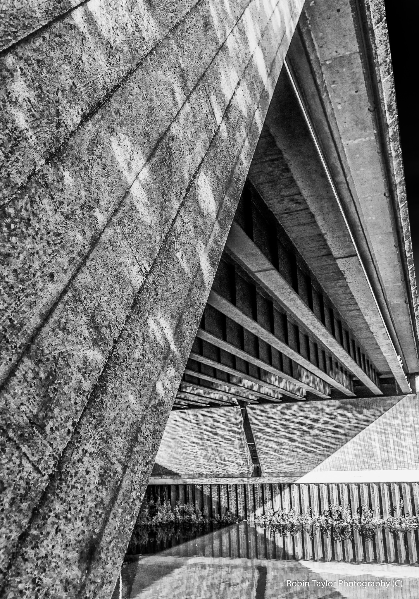 under the bridge  by Robin Taylor