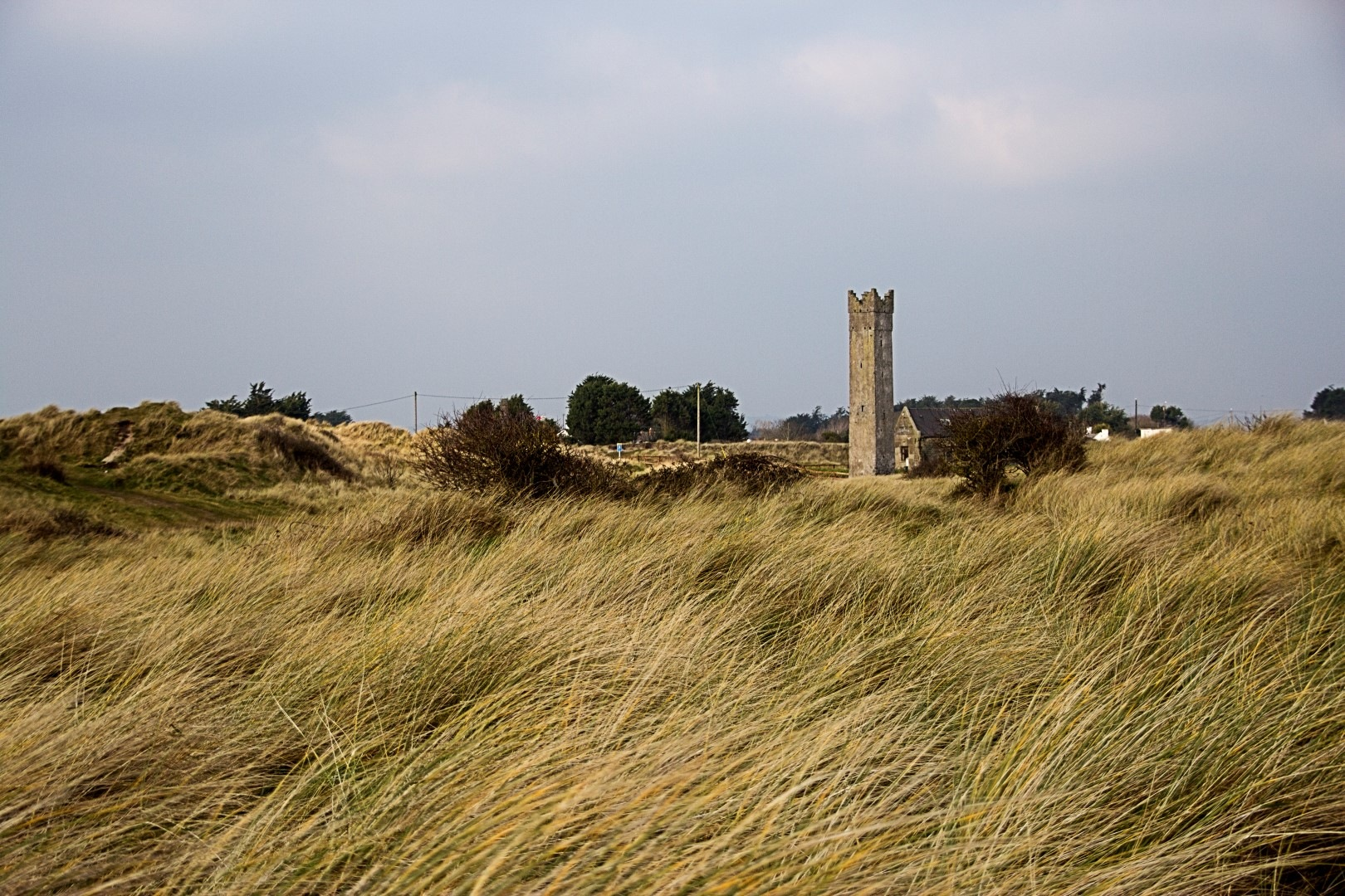 Mornington tower by Peter Tormey