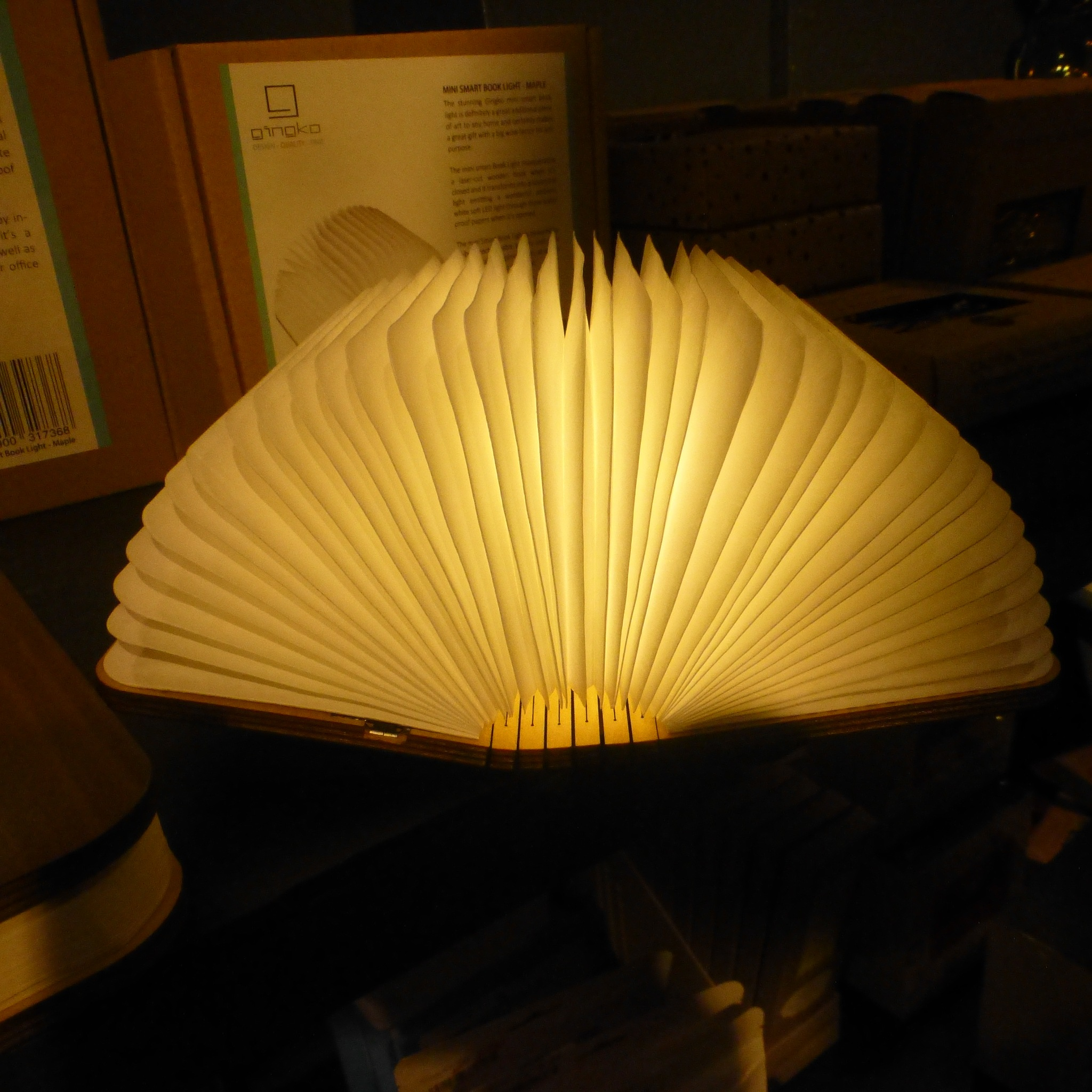 BOOKLIGHT . . .  by beverley