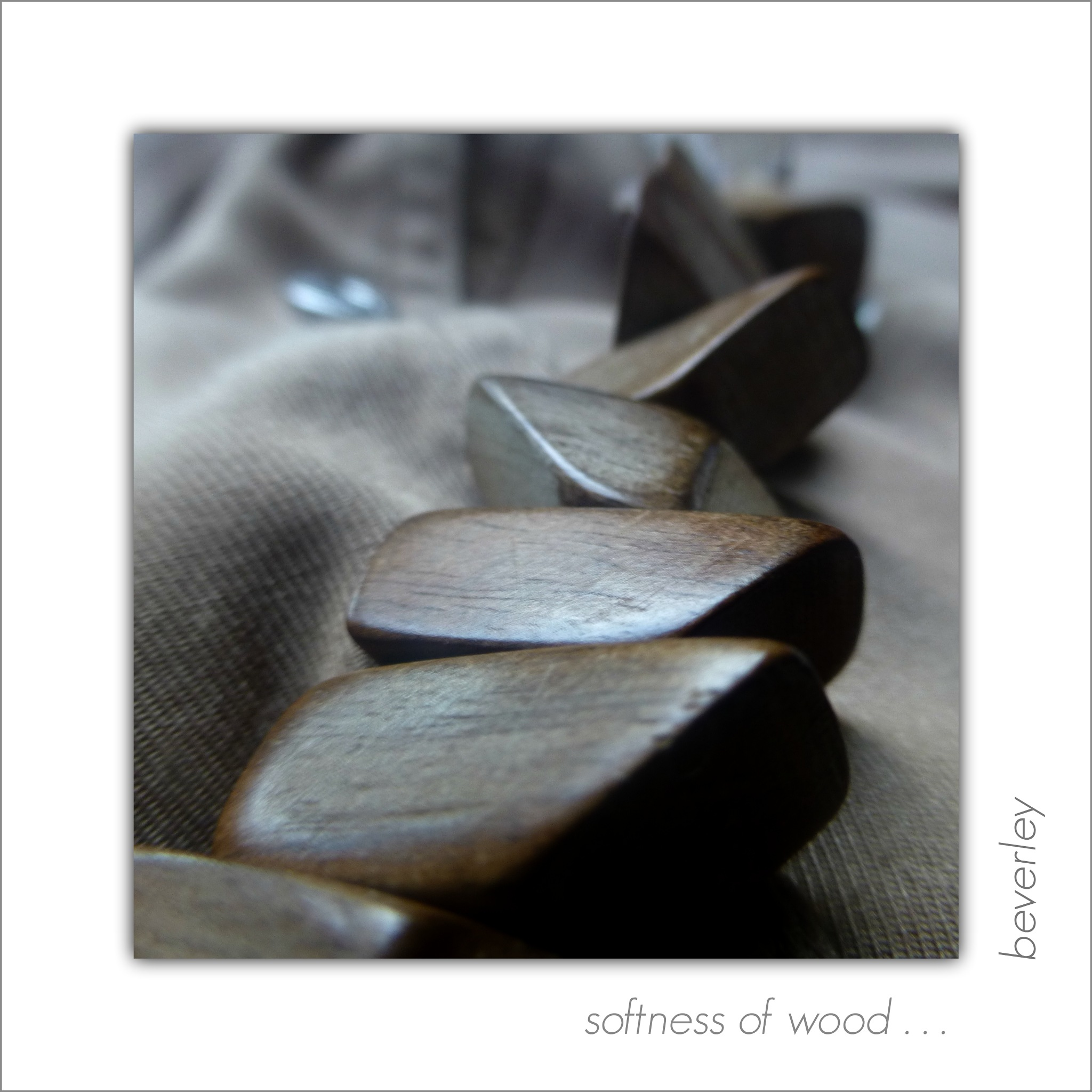 SOFTNESS of WOOD . . . by beverley