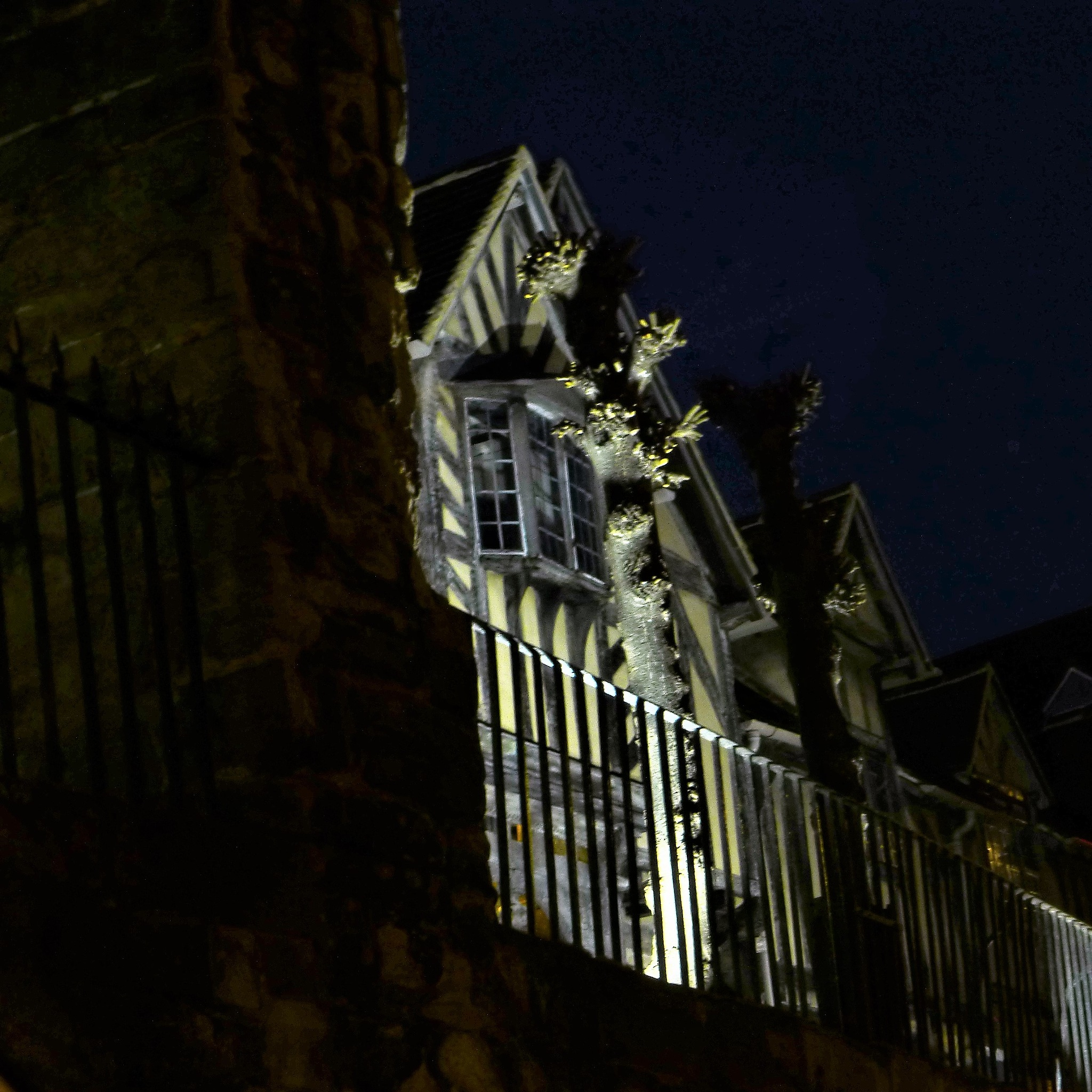 Photo in Architecture #lord lycester hospital #warwick #architecture #night #spotlight #drive past #old tree #http://www.lordleycester.com/