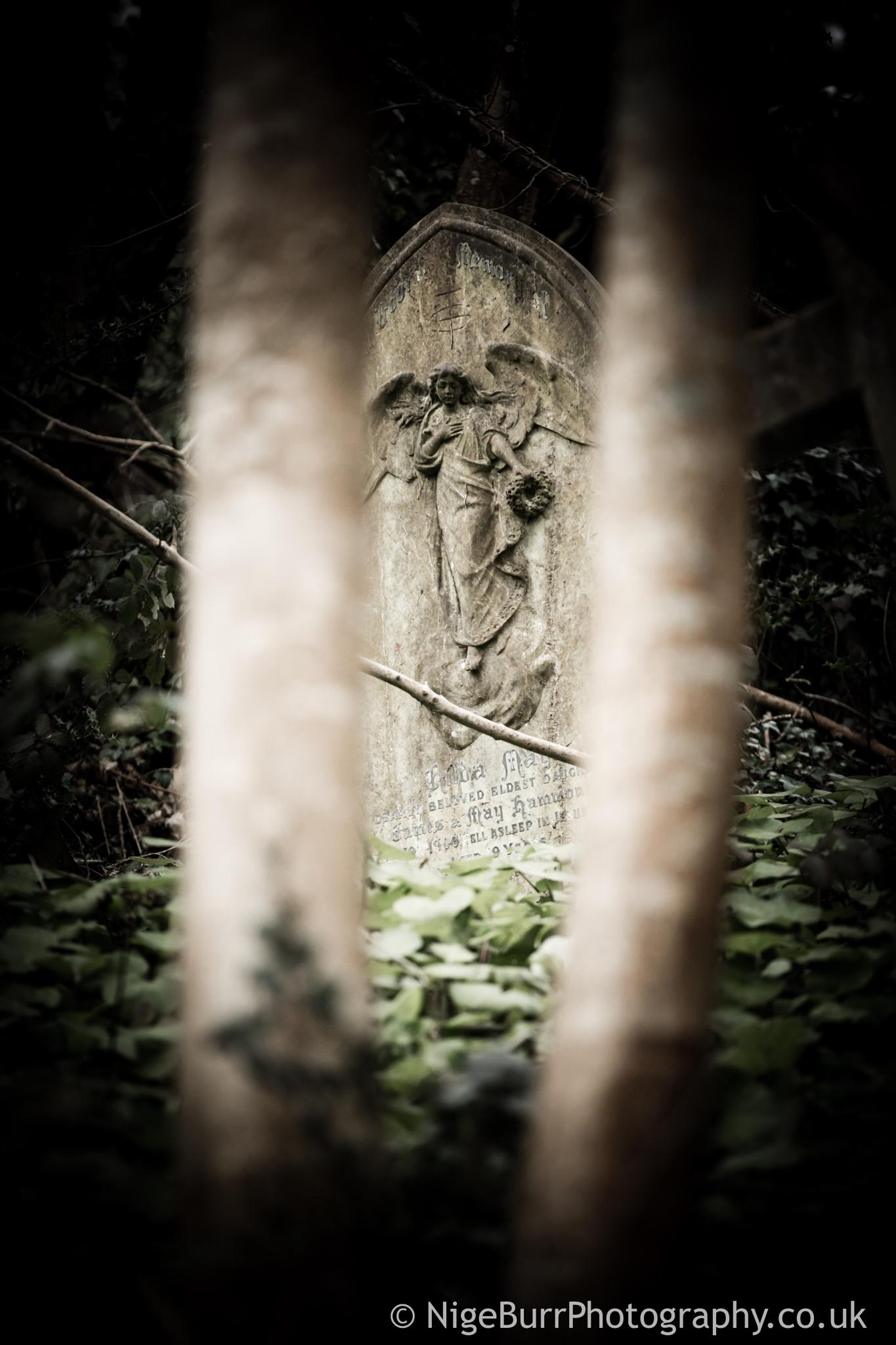 Angel over death by nigeburr