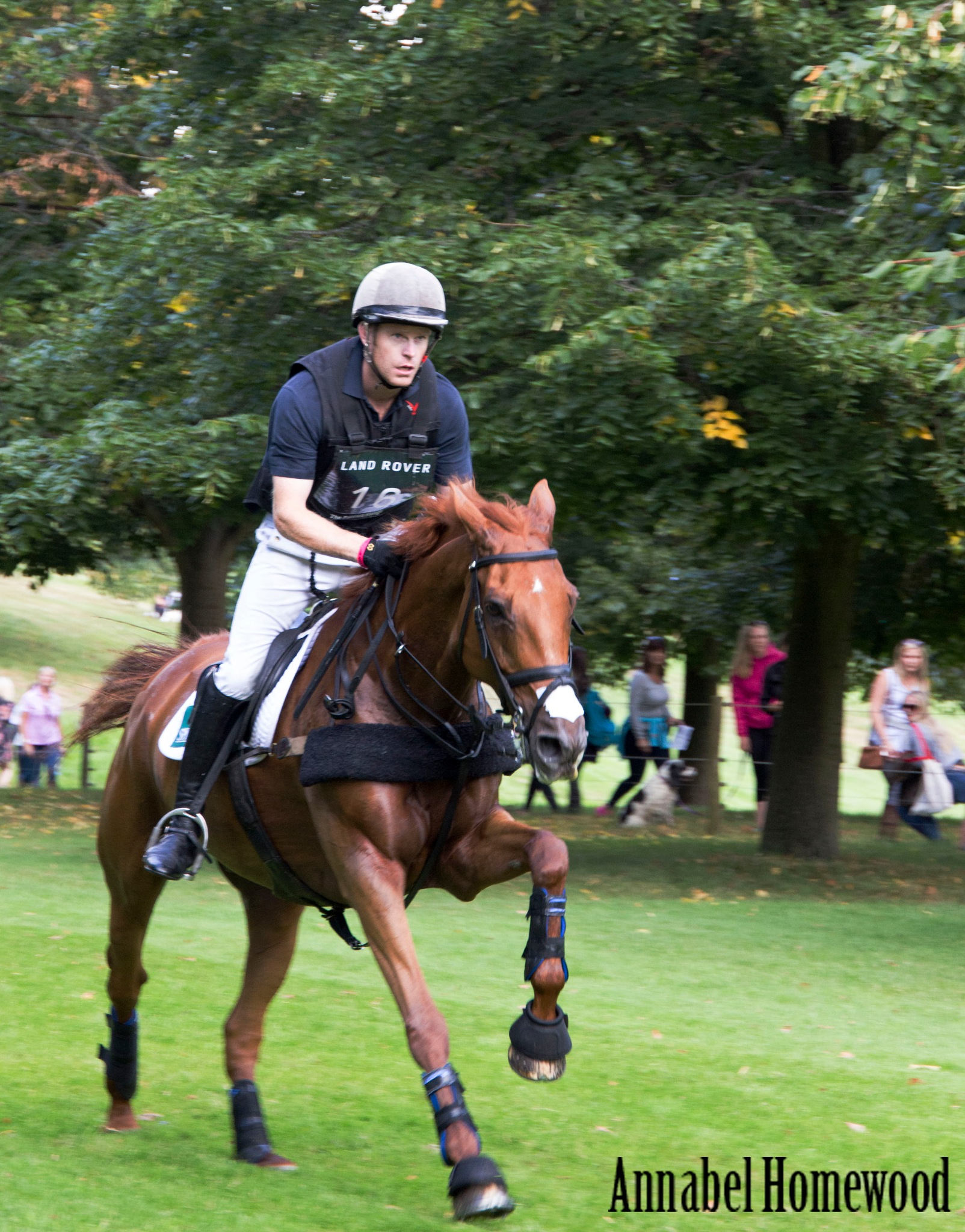 Burghley Horse Trials by Annabel Homewood