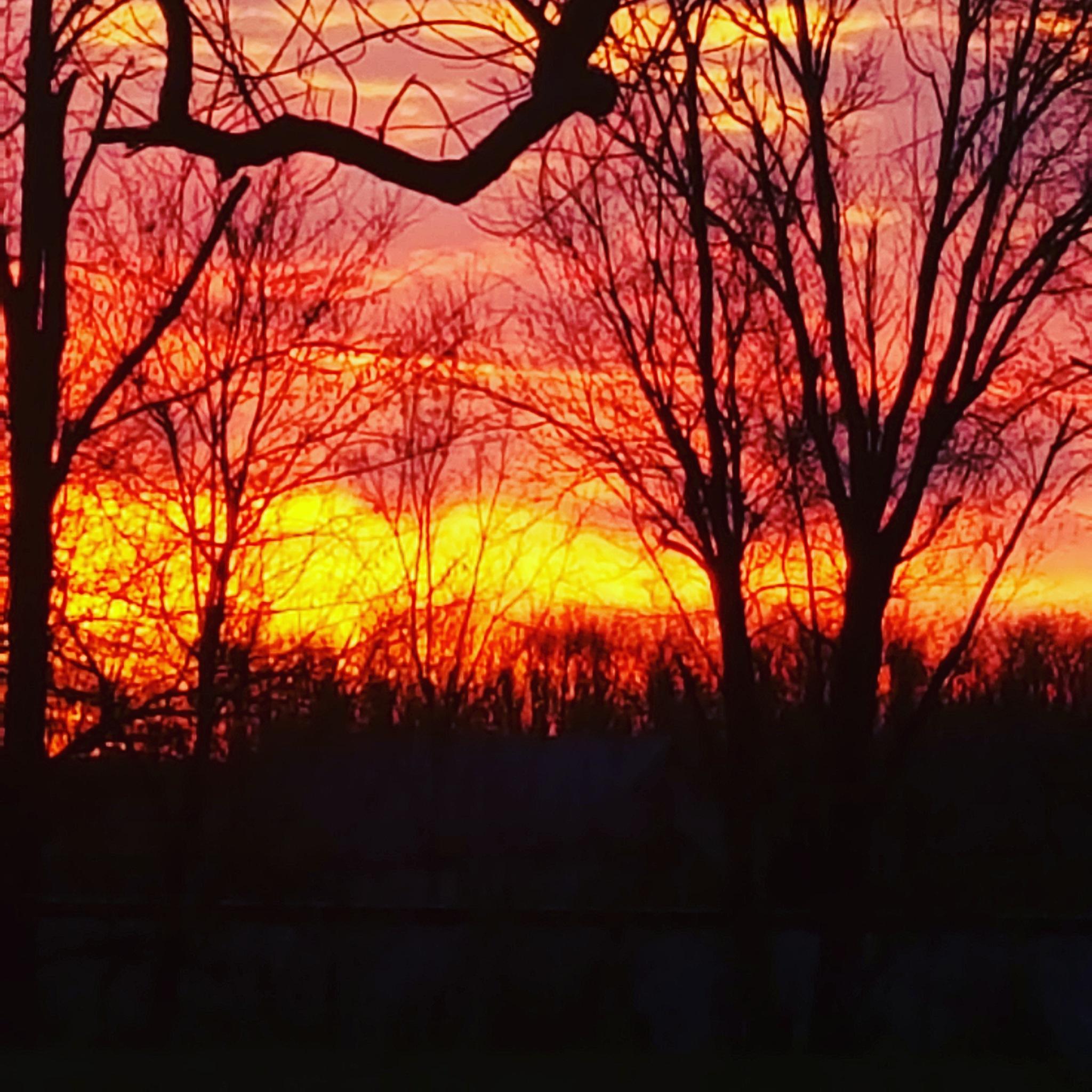 sunrise  by Becky Tinnin