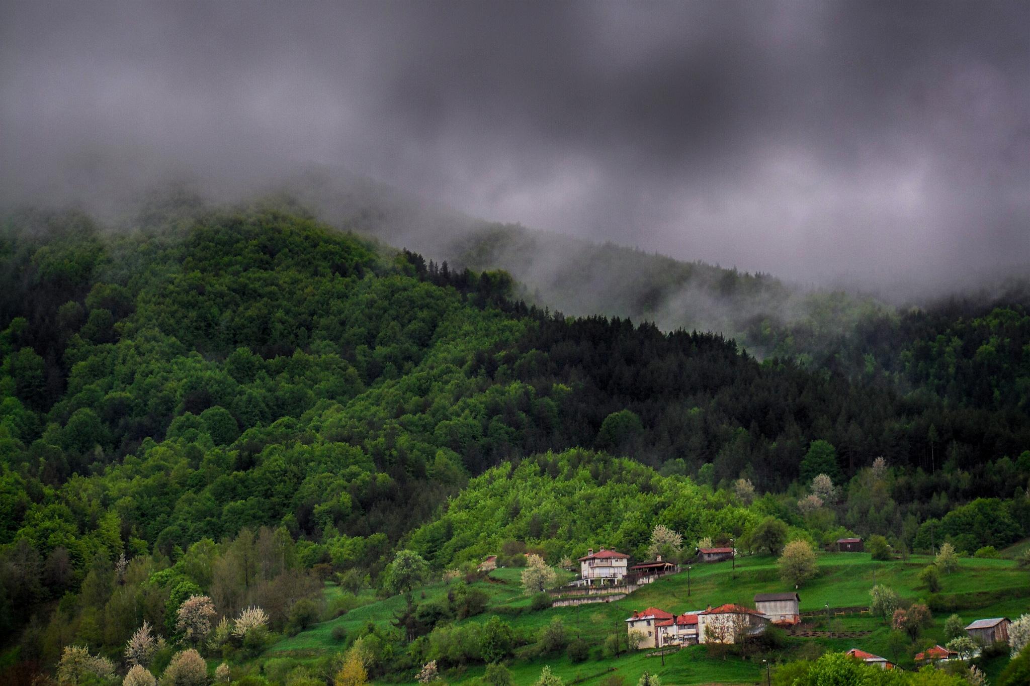 Rainy day by Denis Shukerov