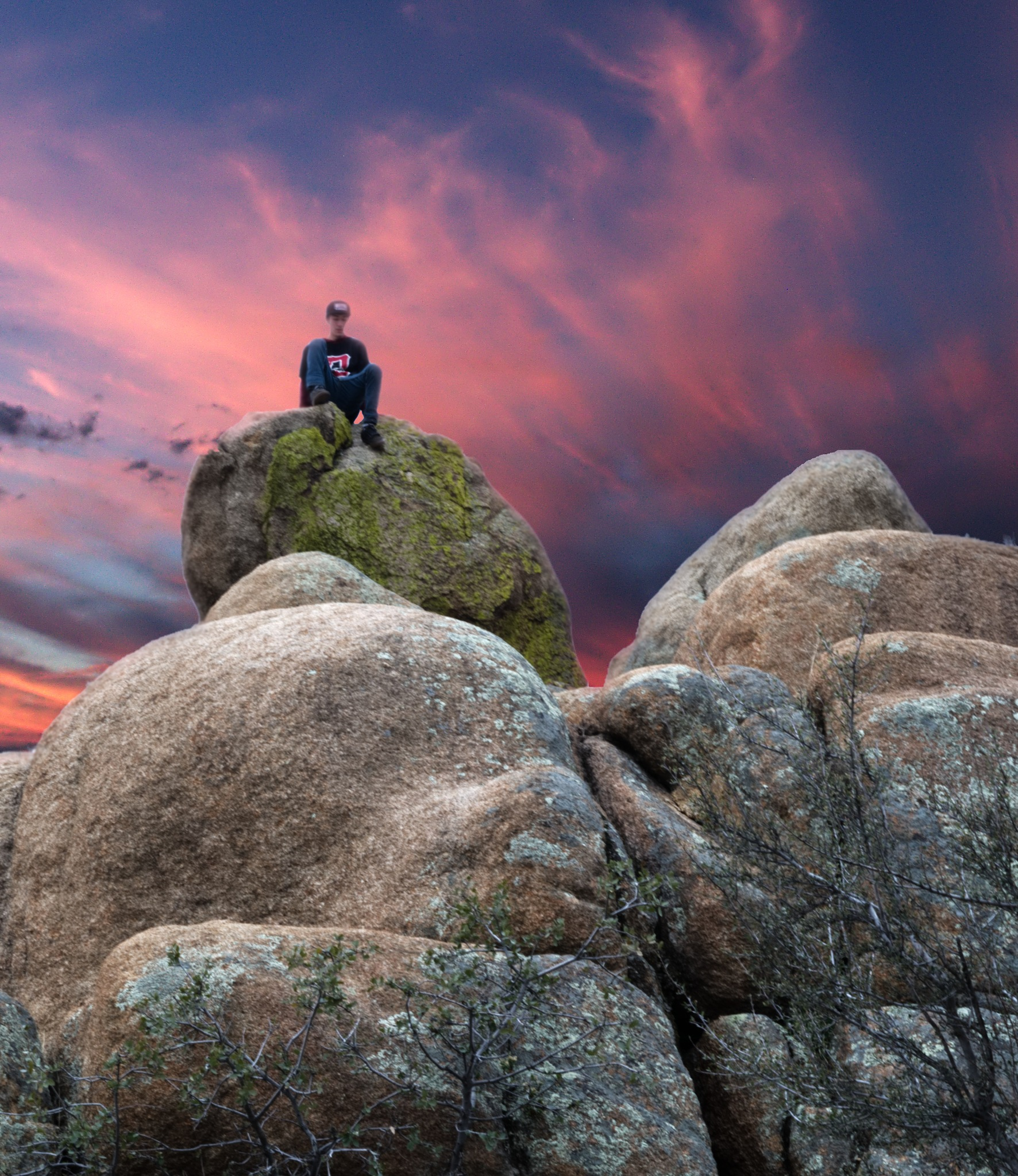 Day after day, alone on a hill by Craig Adamson