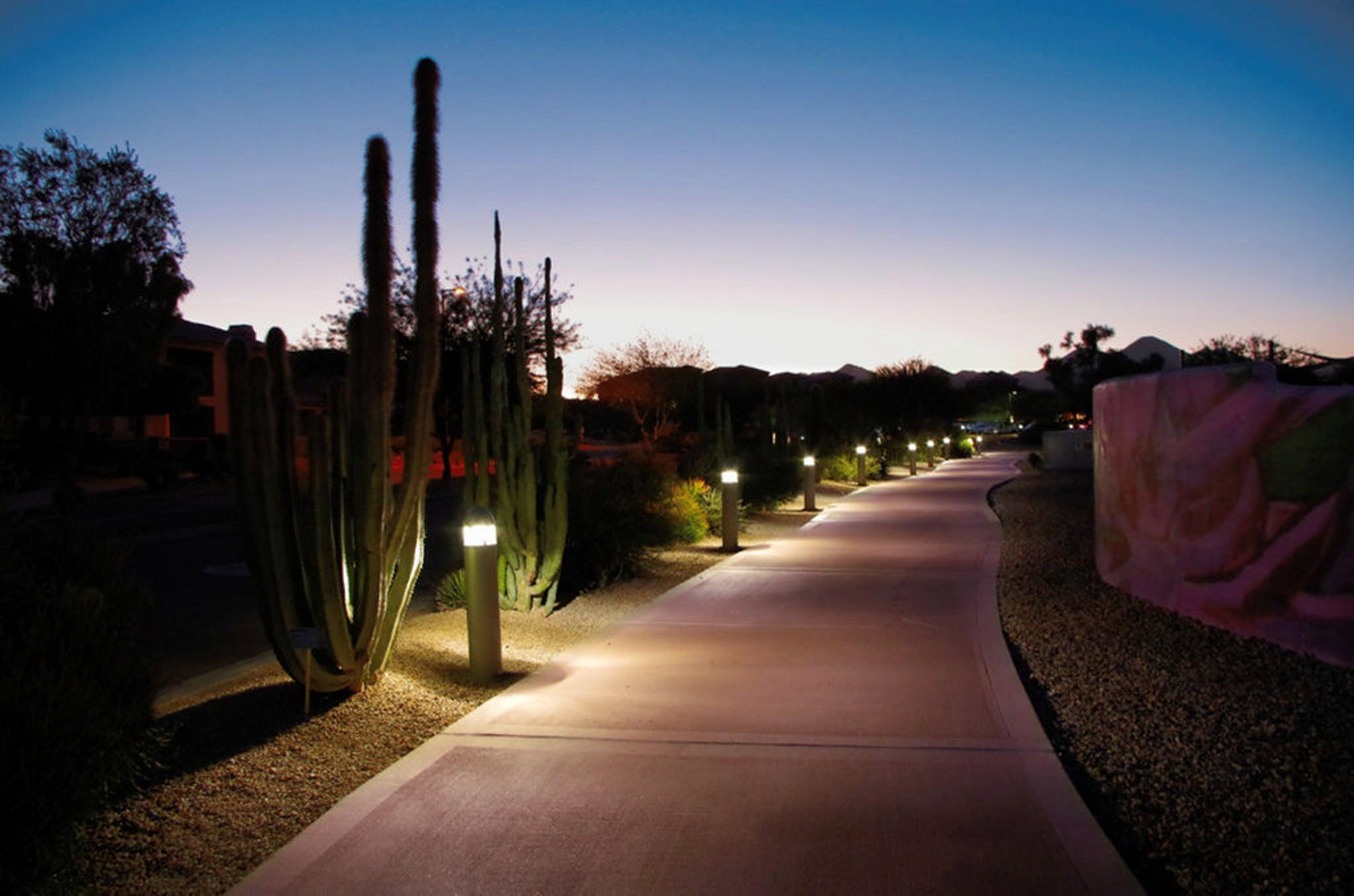 The Path Illuminated by Craig Adamson