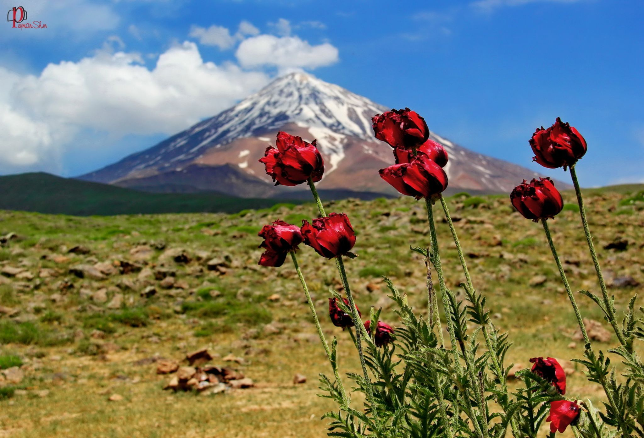 Damavand peak-Iran by Peyman shm