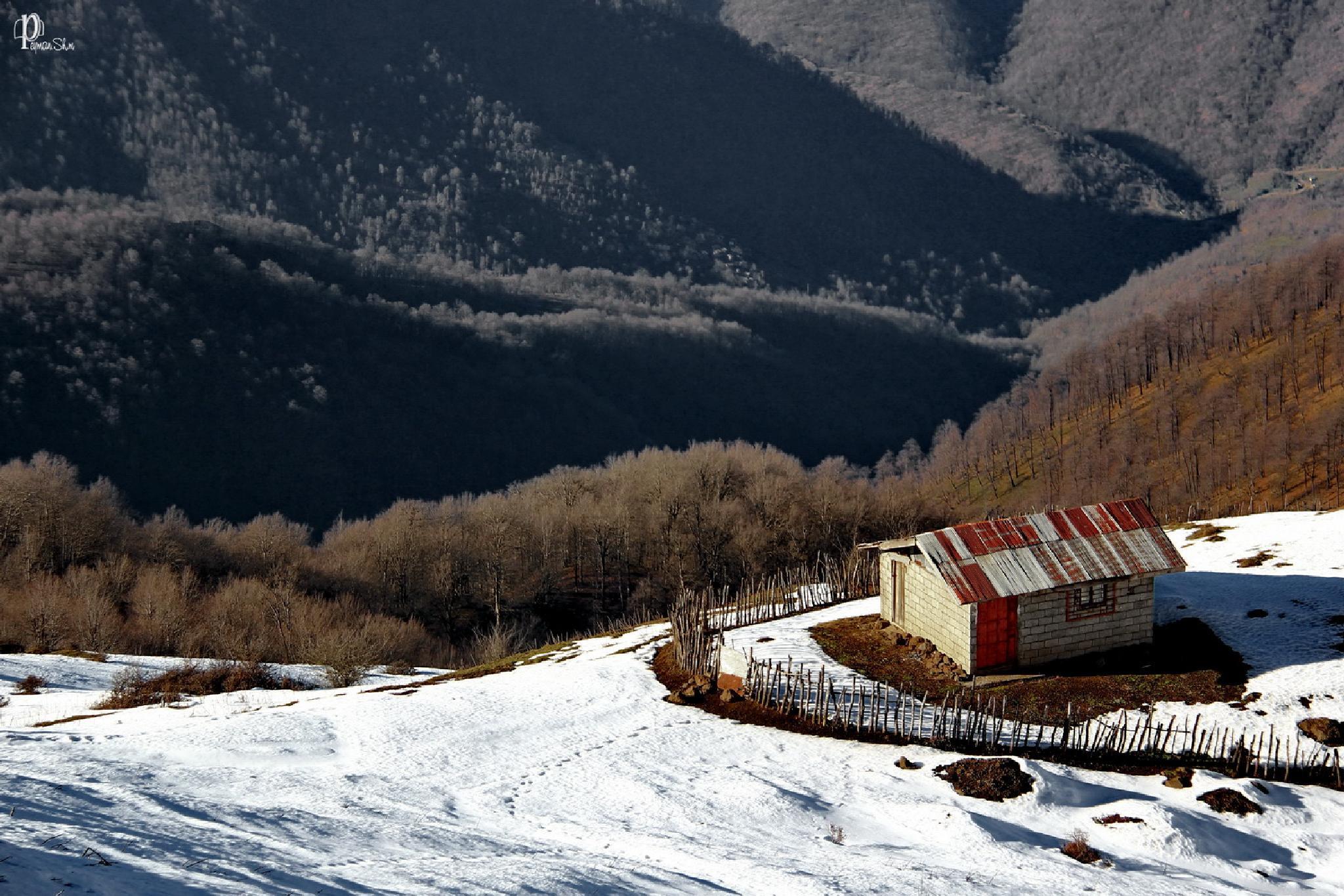 Winter by Peyman shm