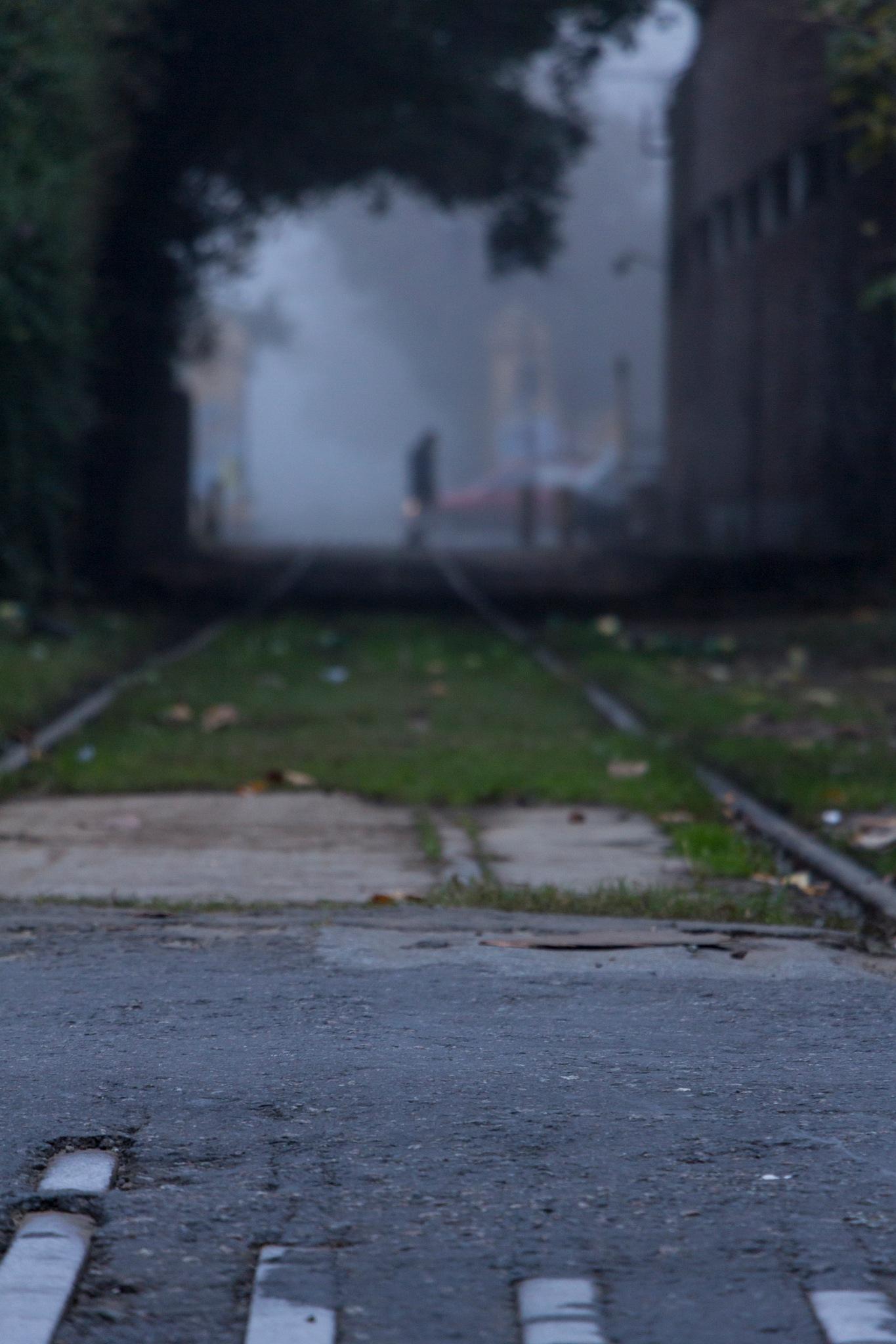 Street by Daniela Lewkow