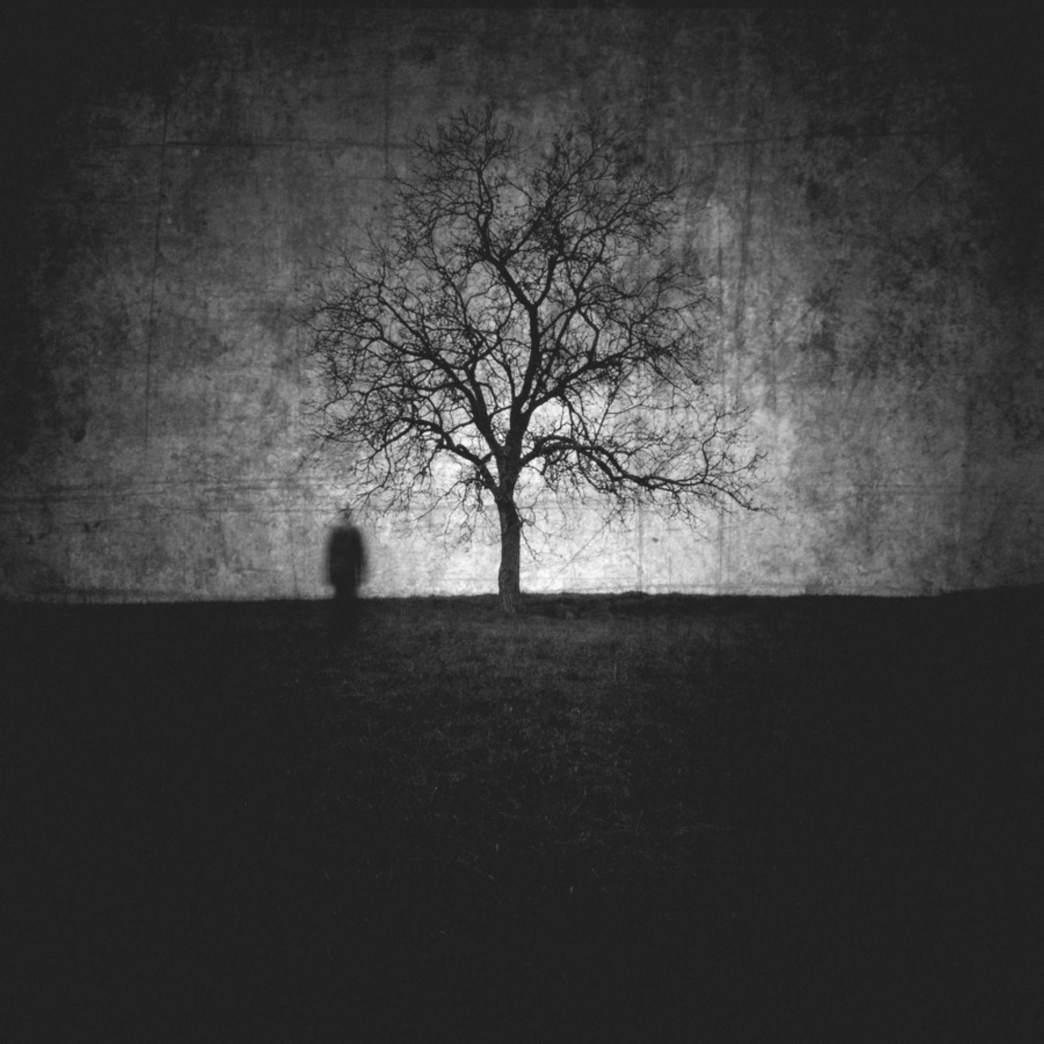 Parfois, un arbre humanise mieux un paysage que ne le ferait un homme by Stephane Anthonioz