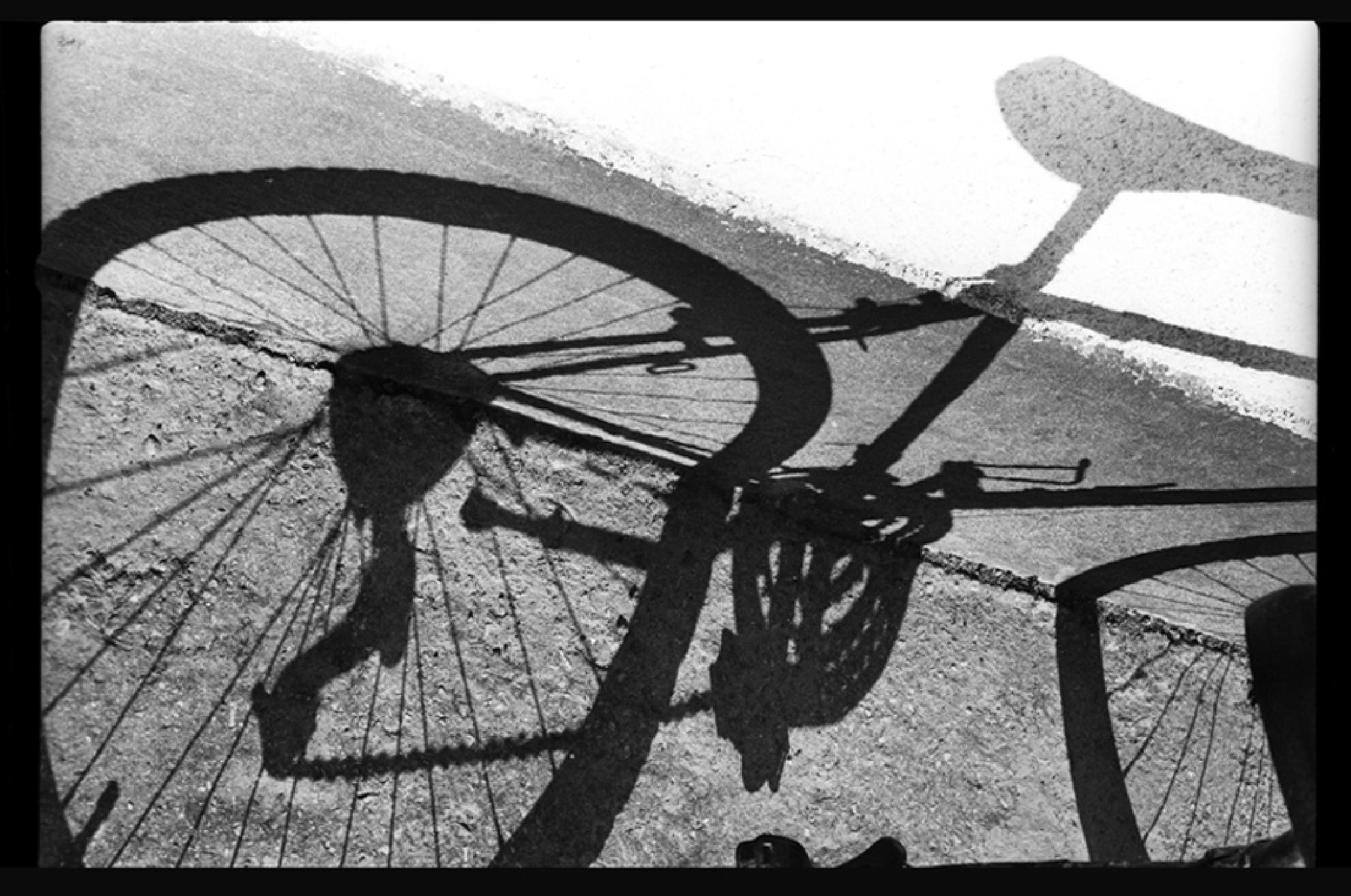 Cycle... by gabortamasi921