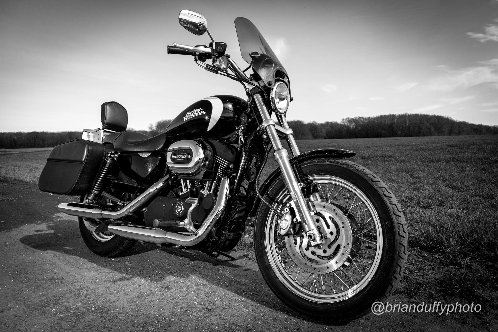 Harley Davidson XL1200R Roadster by BrianDuffyPhoto
