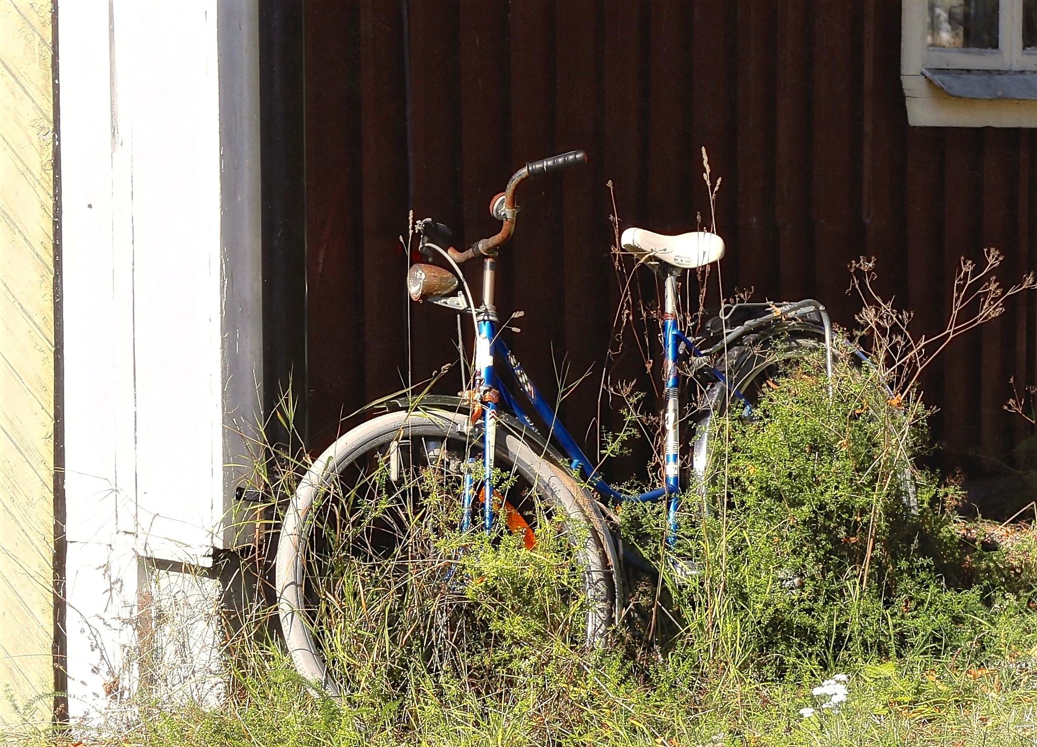 eco-friendly by Jarl Gillenberg