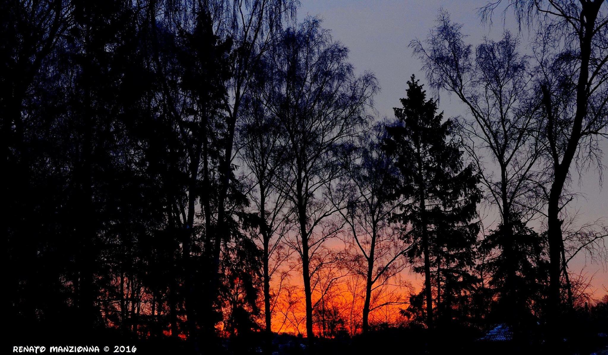 Morning rise.. by Renato Manzionna
