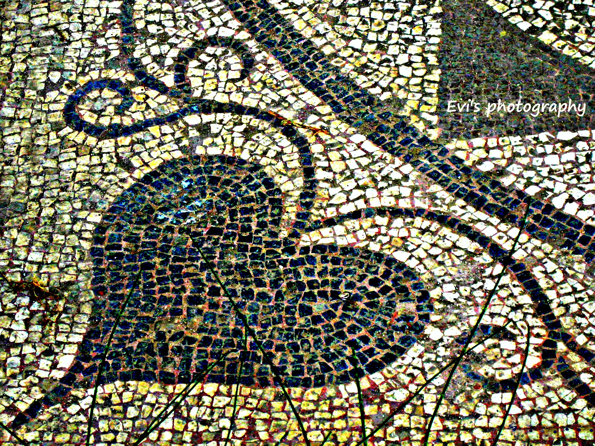 Photo in Architecture #colors #details #mosaic