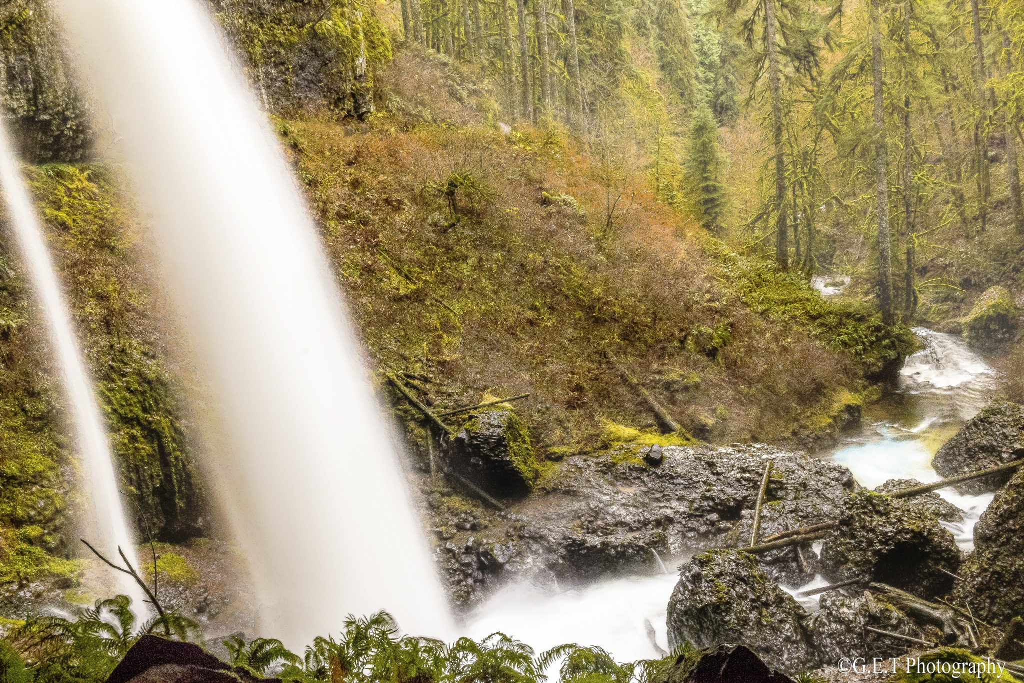 Silver Falls Park Oregon by Gregory Thomas