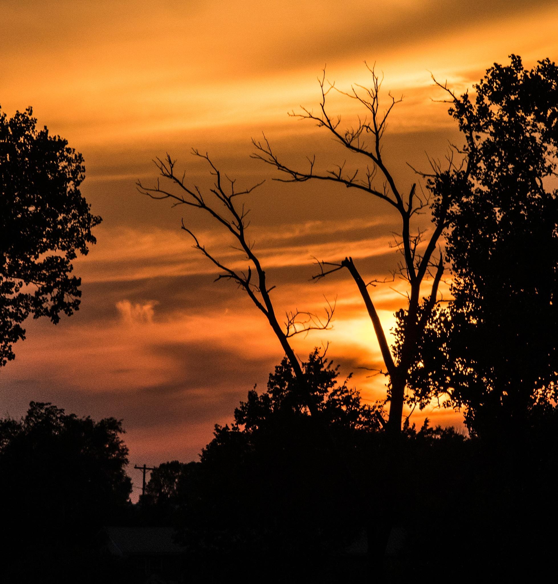 Setting Sun by FritzMendell