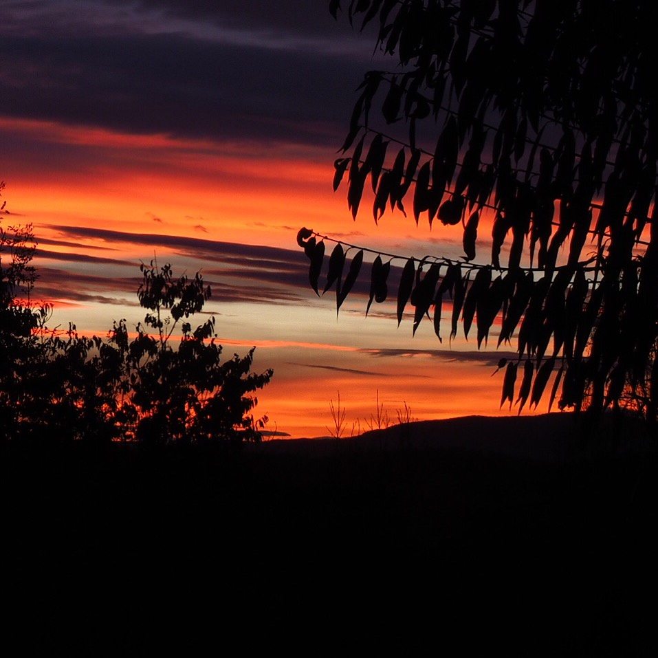 Sunset by RogerEllefsen