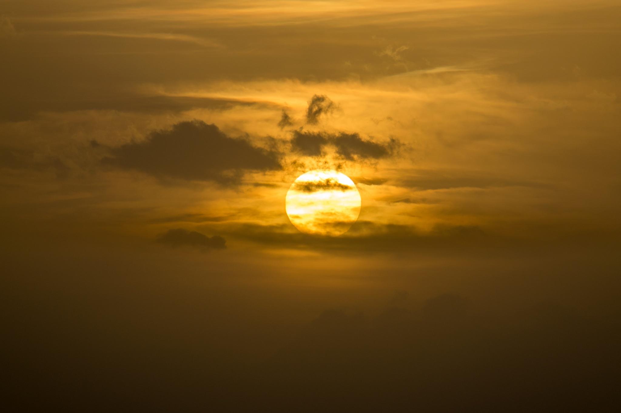 portrait of sun by Lotfi Chouchene