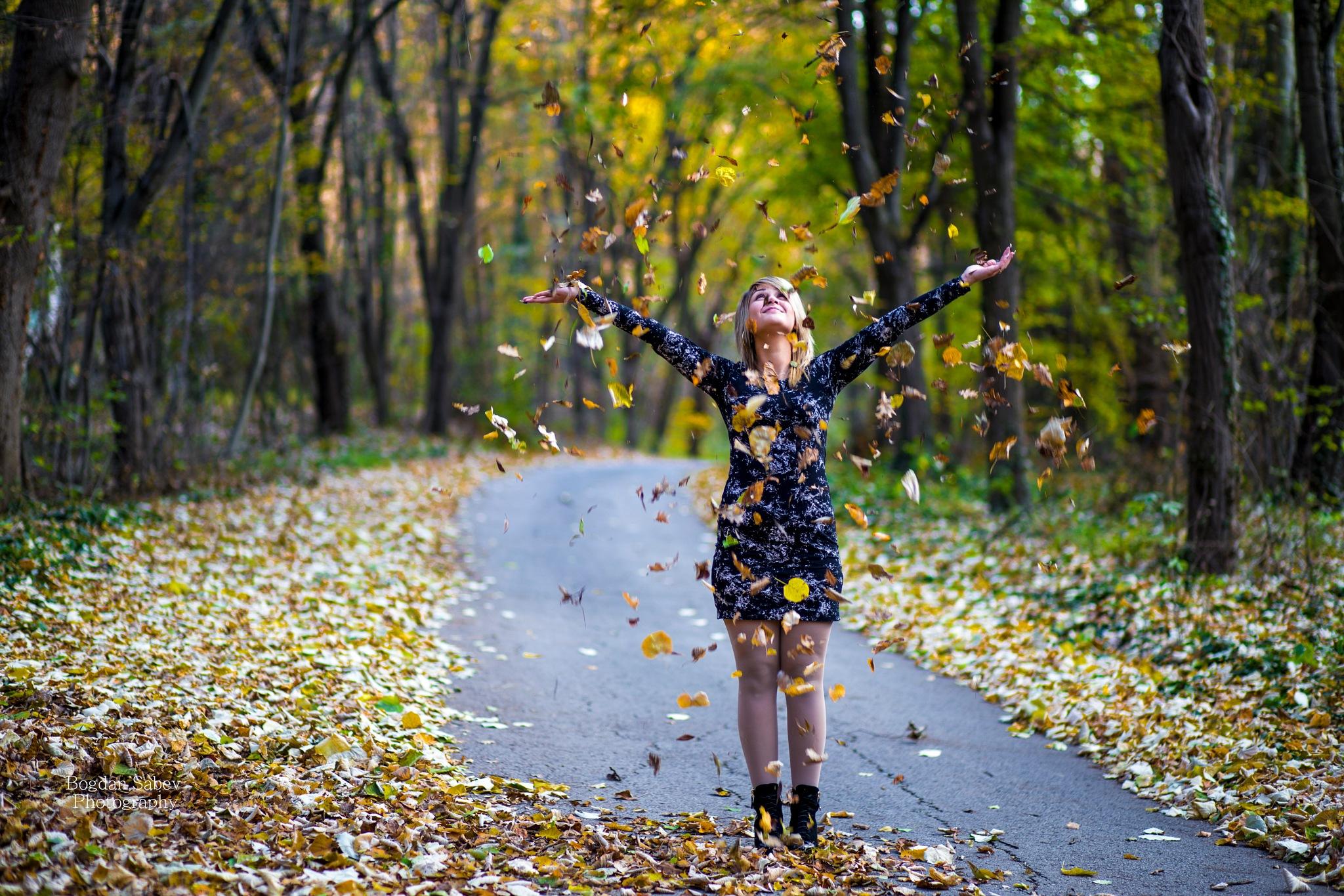 autumn by Bogdan