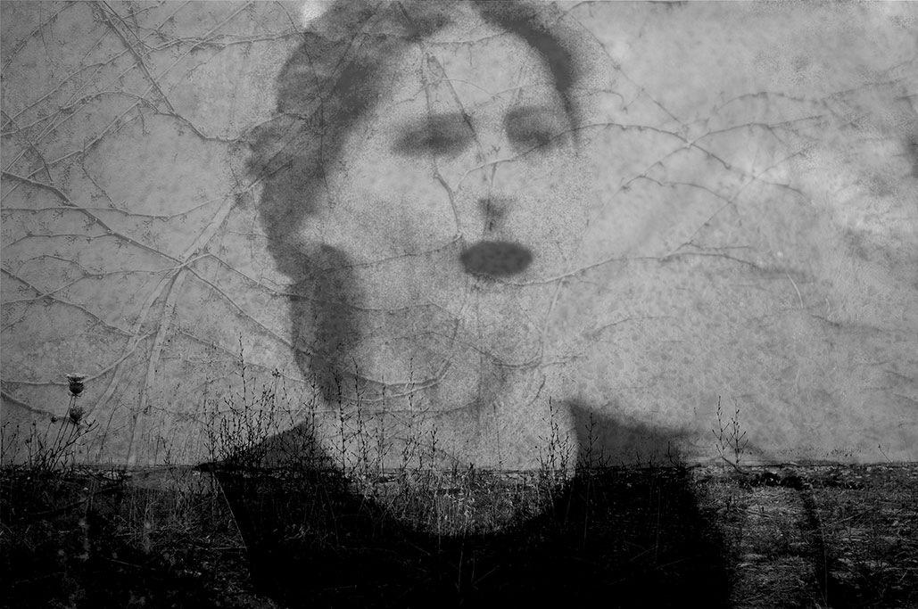 ° by Marilia Gallus