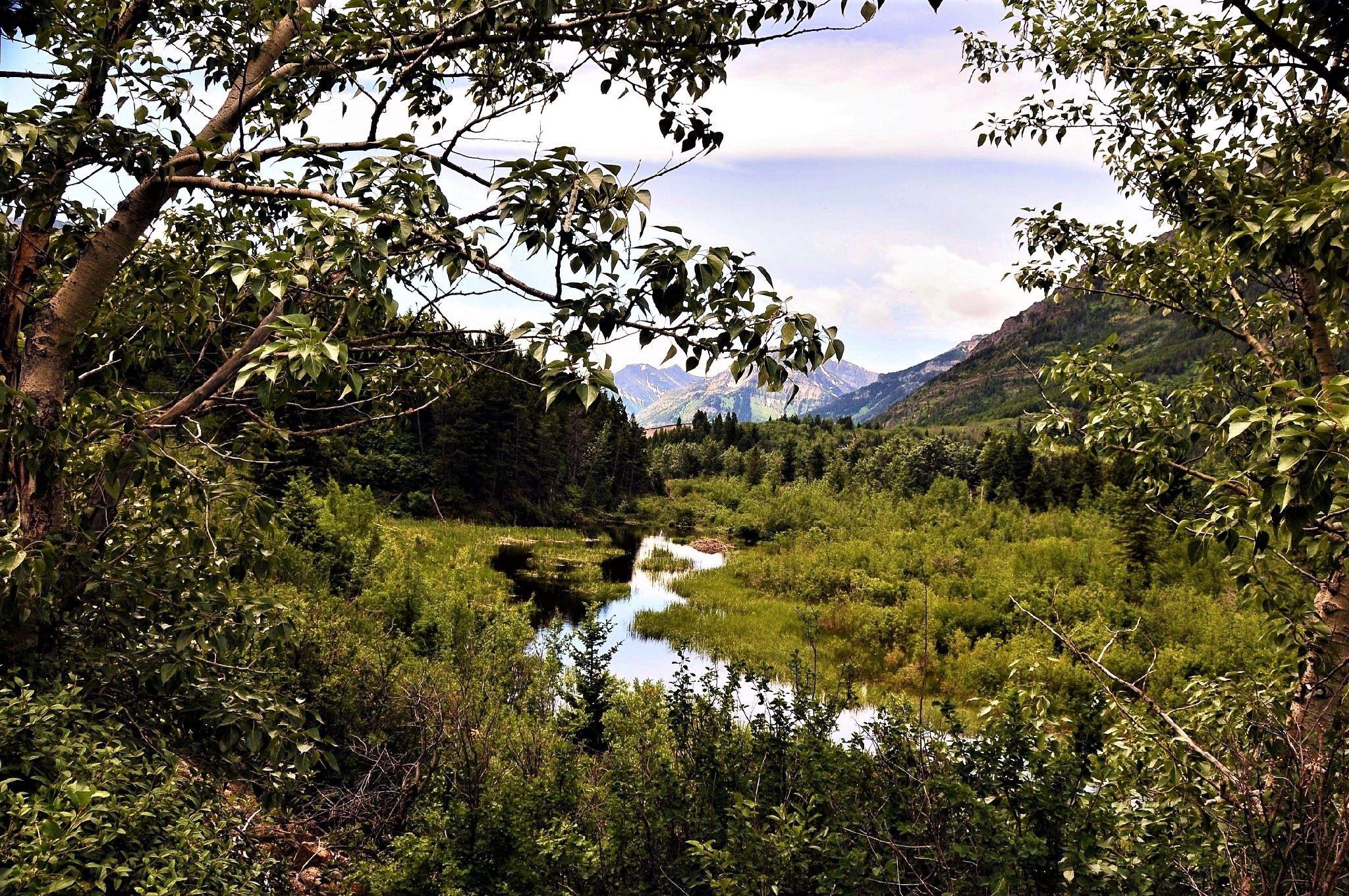 A little stream among the BIG mountains by    Pasqual