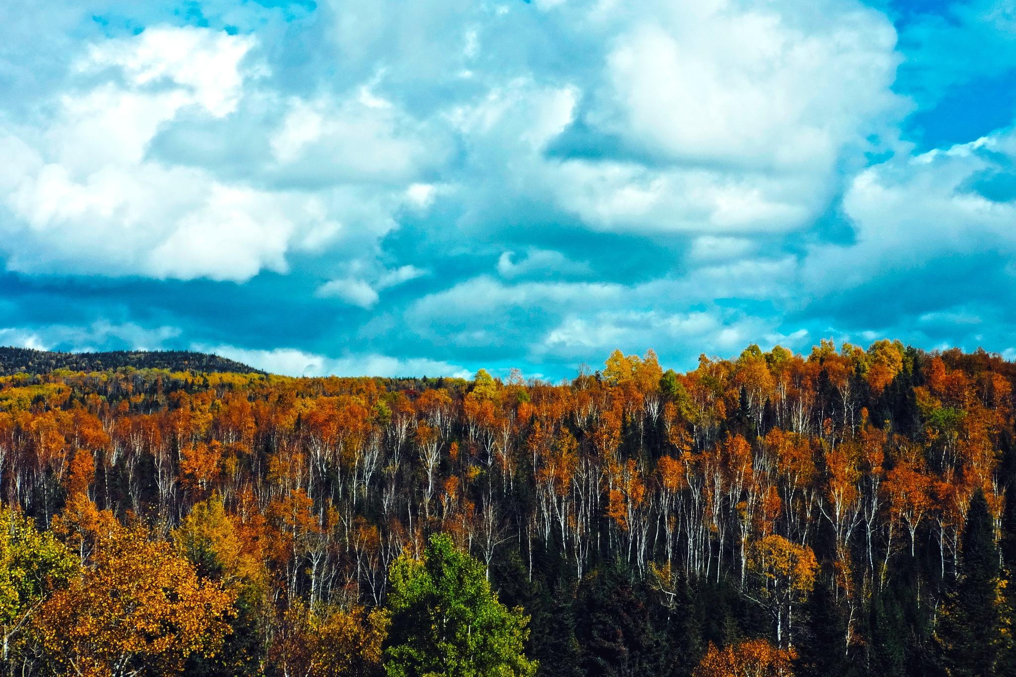 Lovely Canada. Quebec by Vitaliy Barakovskiy