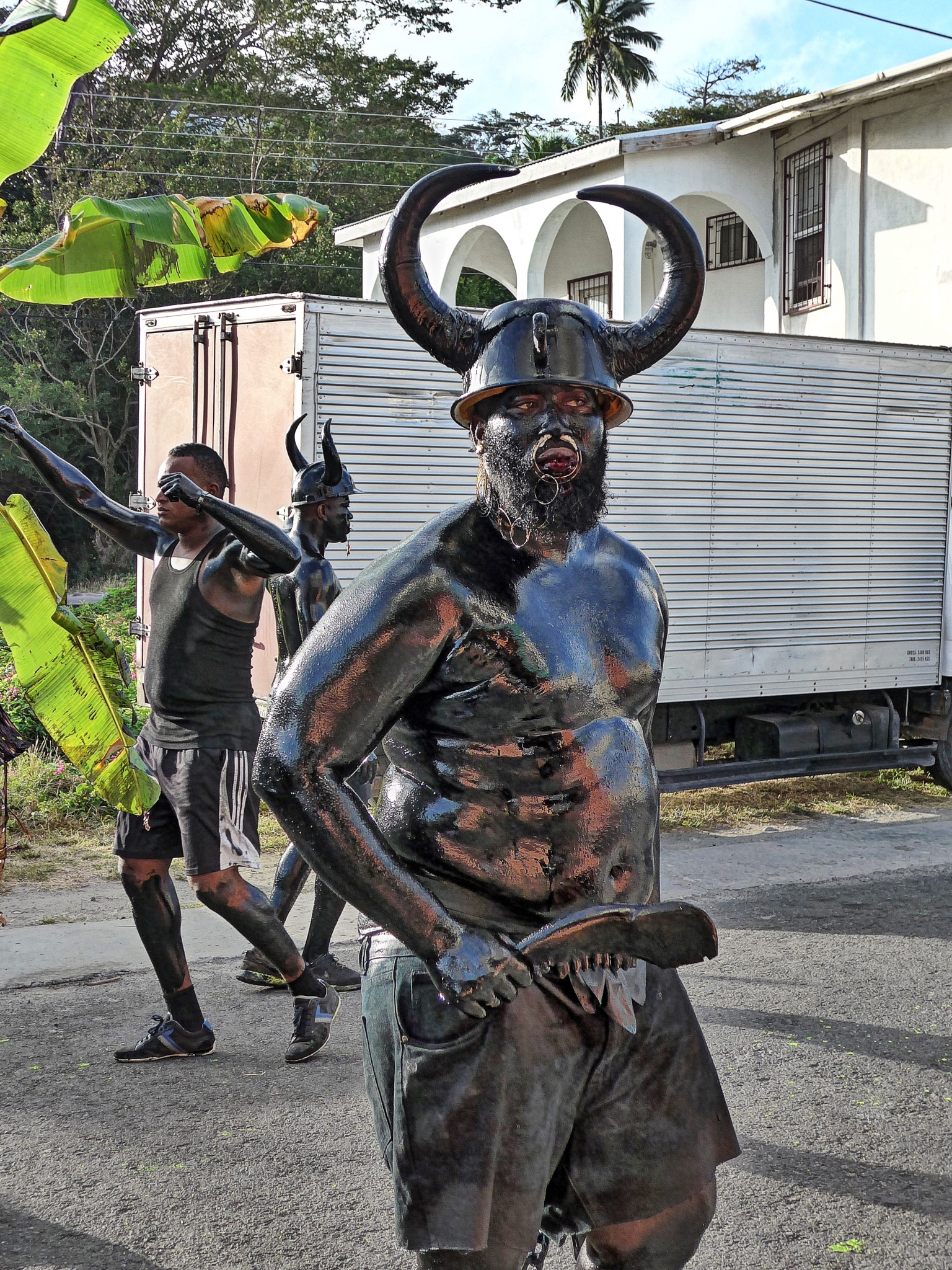 CARRIACOU Carnival by Nancy A Wall