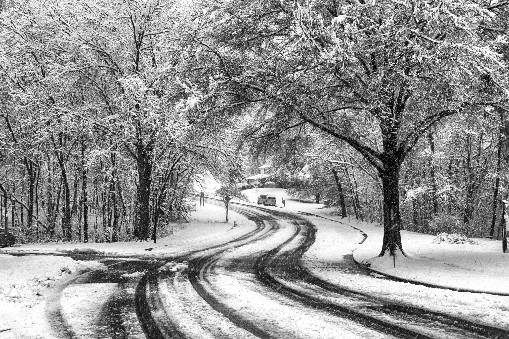 Snowfall on the First Day of Spring/Southern MD/2018 by aemdigitalphotography
