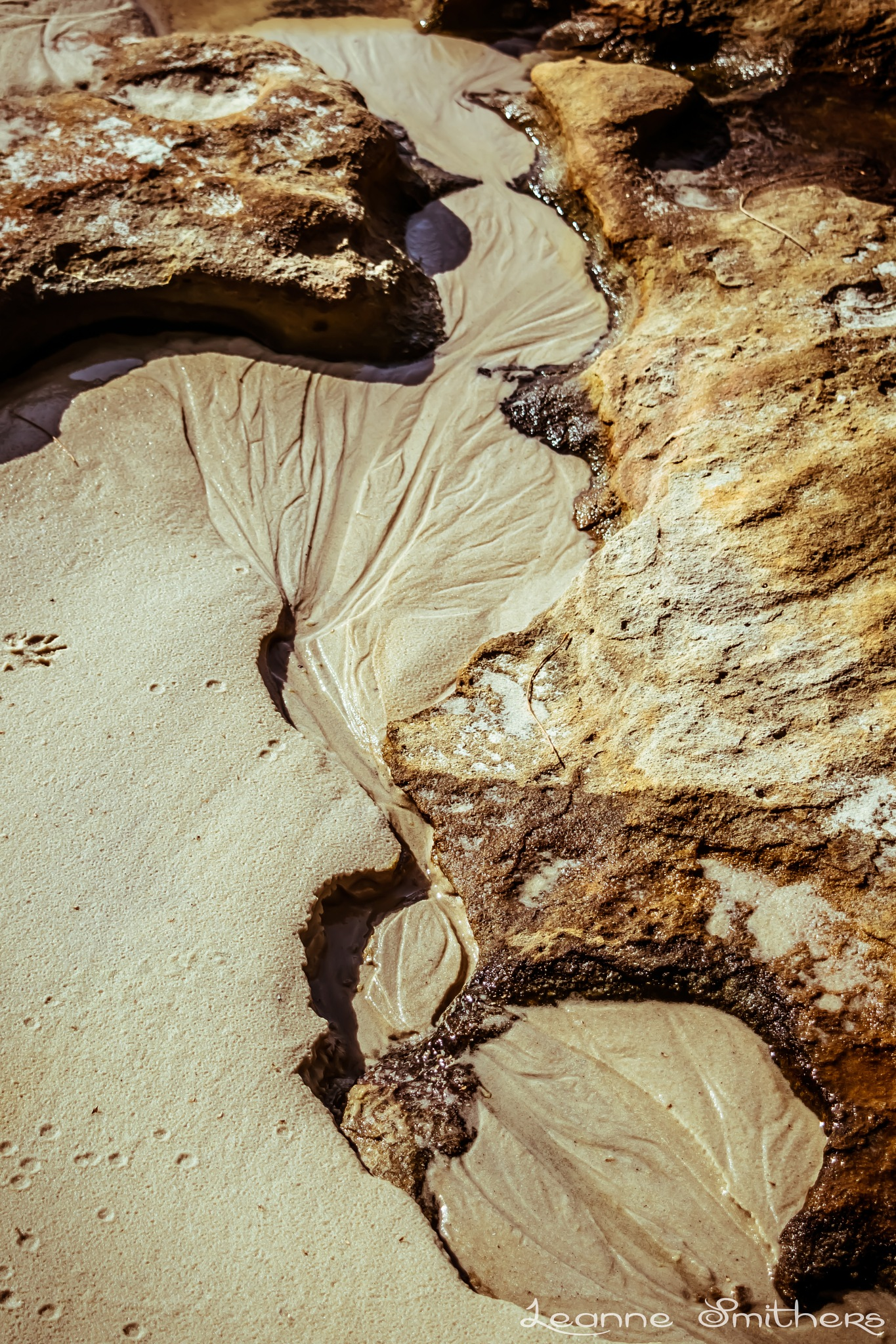 Beach Patterns & Textures by Leanne Smithers