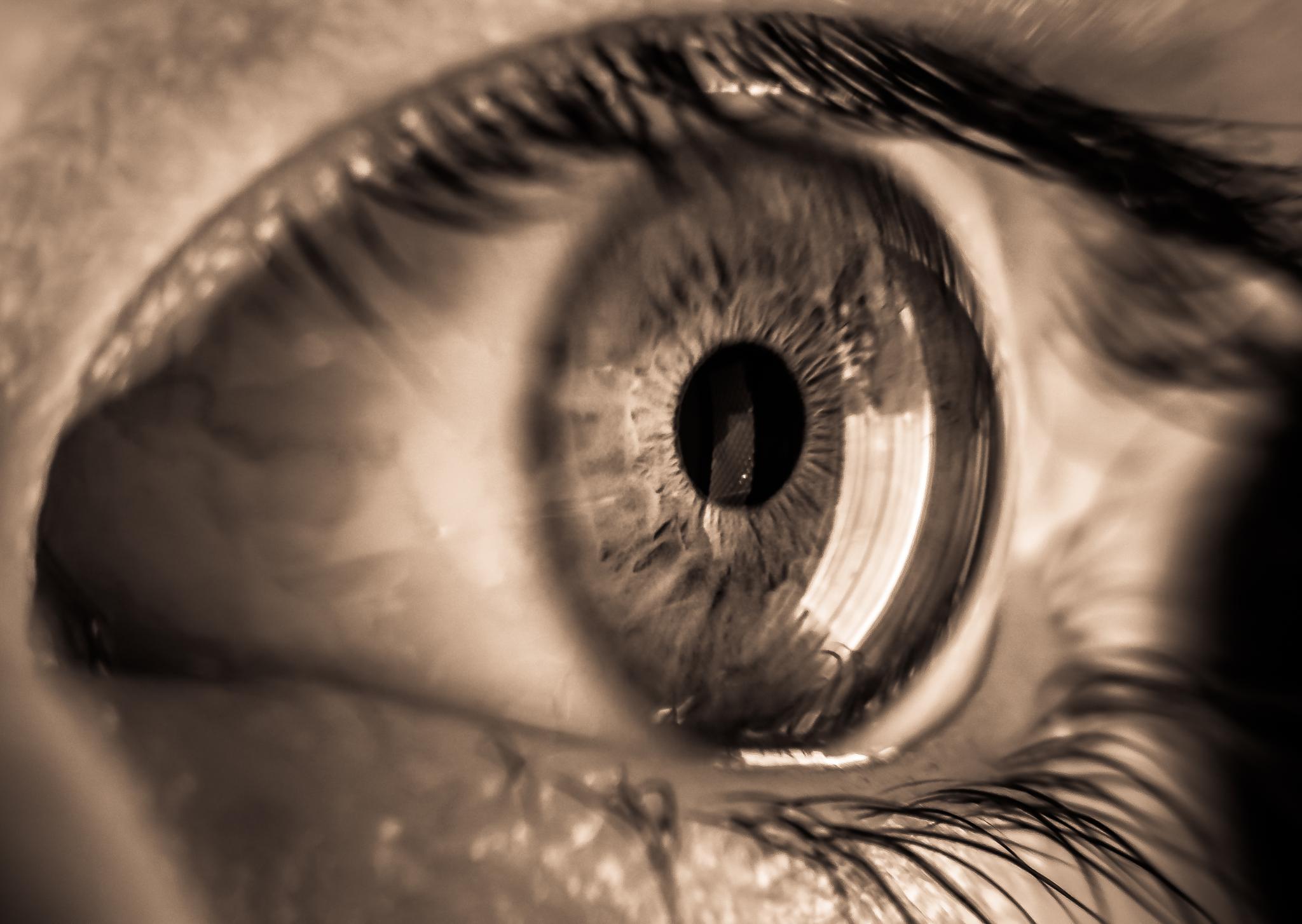 Adams eye by Leanne Smithers