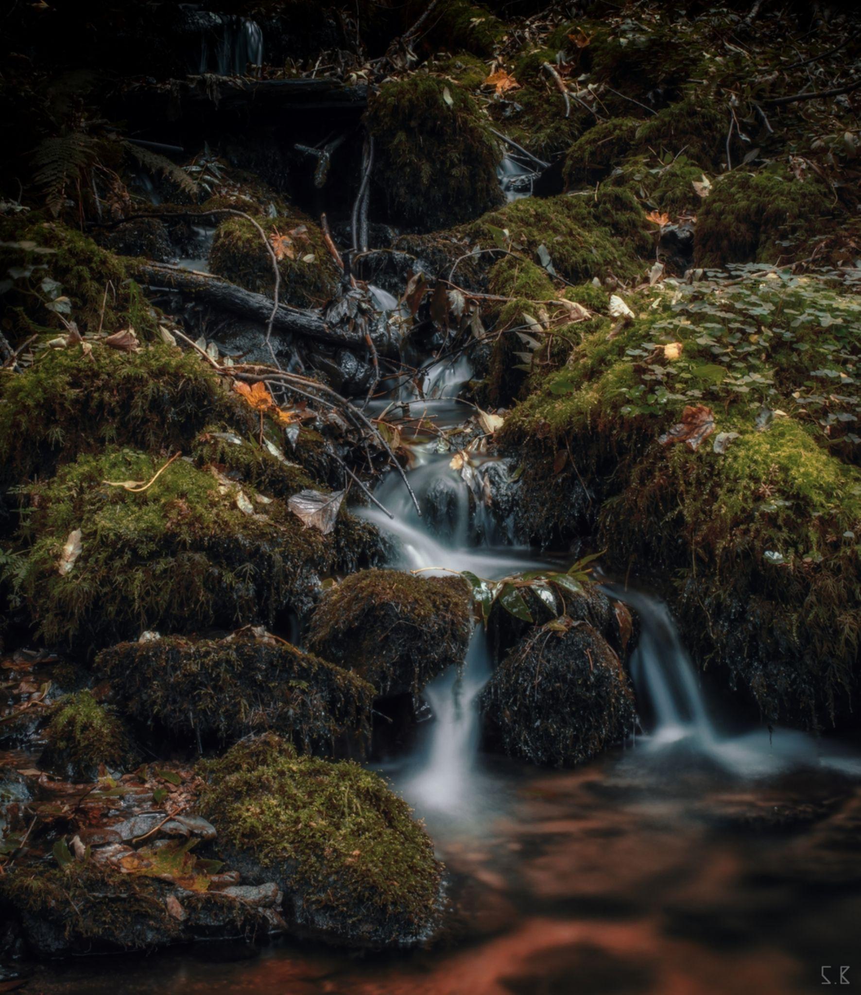 the creek 2 by SB-Prod