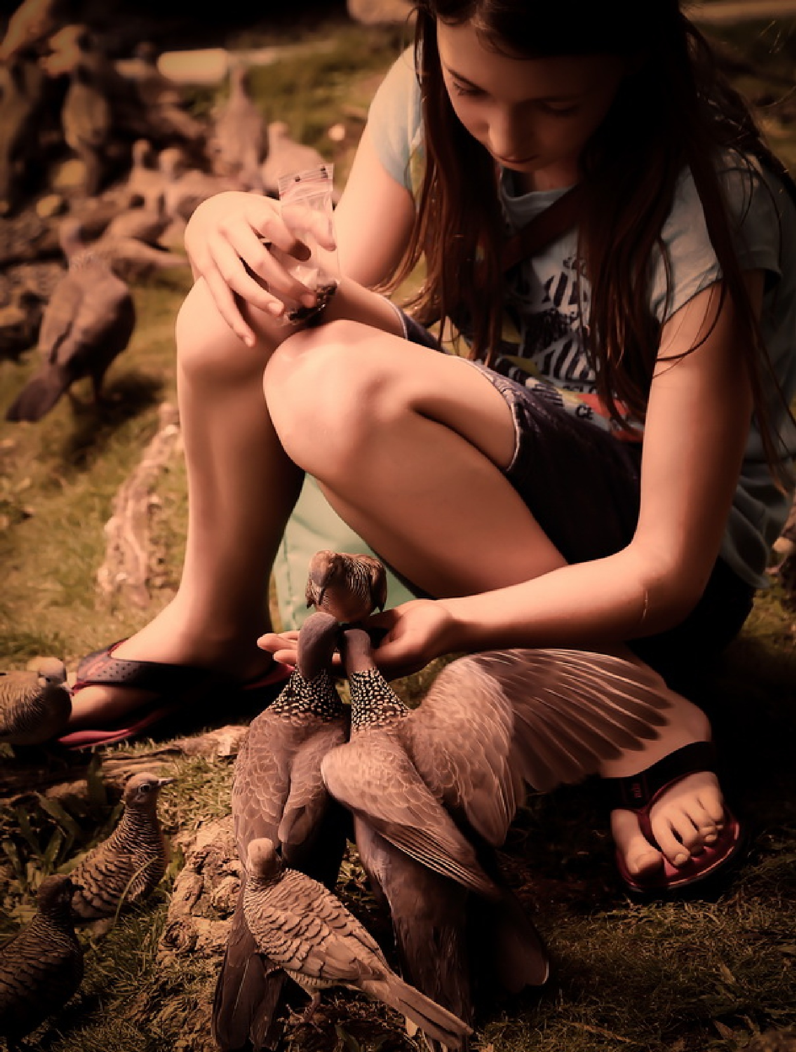 in Hawaii by volkhard sturzbecher