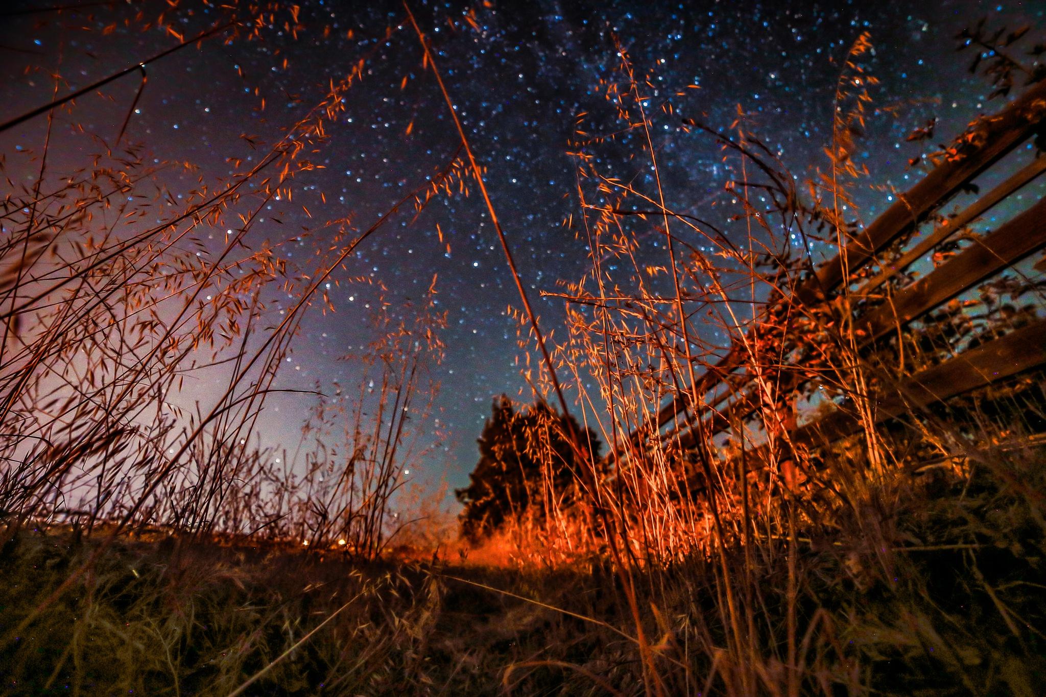 starry night by volkhard sturzbecher