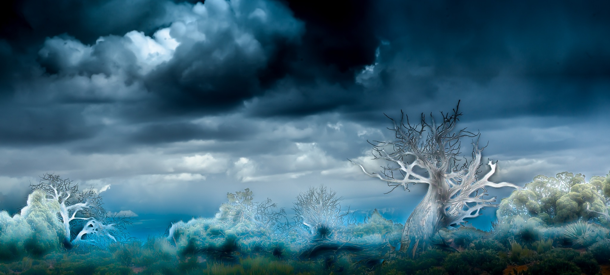 ghostscape by volkhard sturzbecher