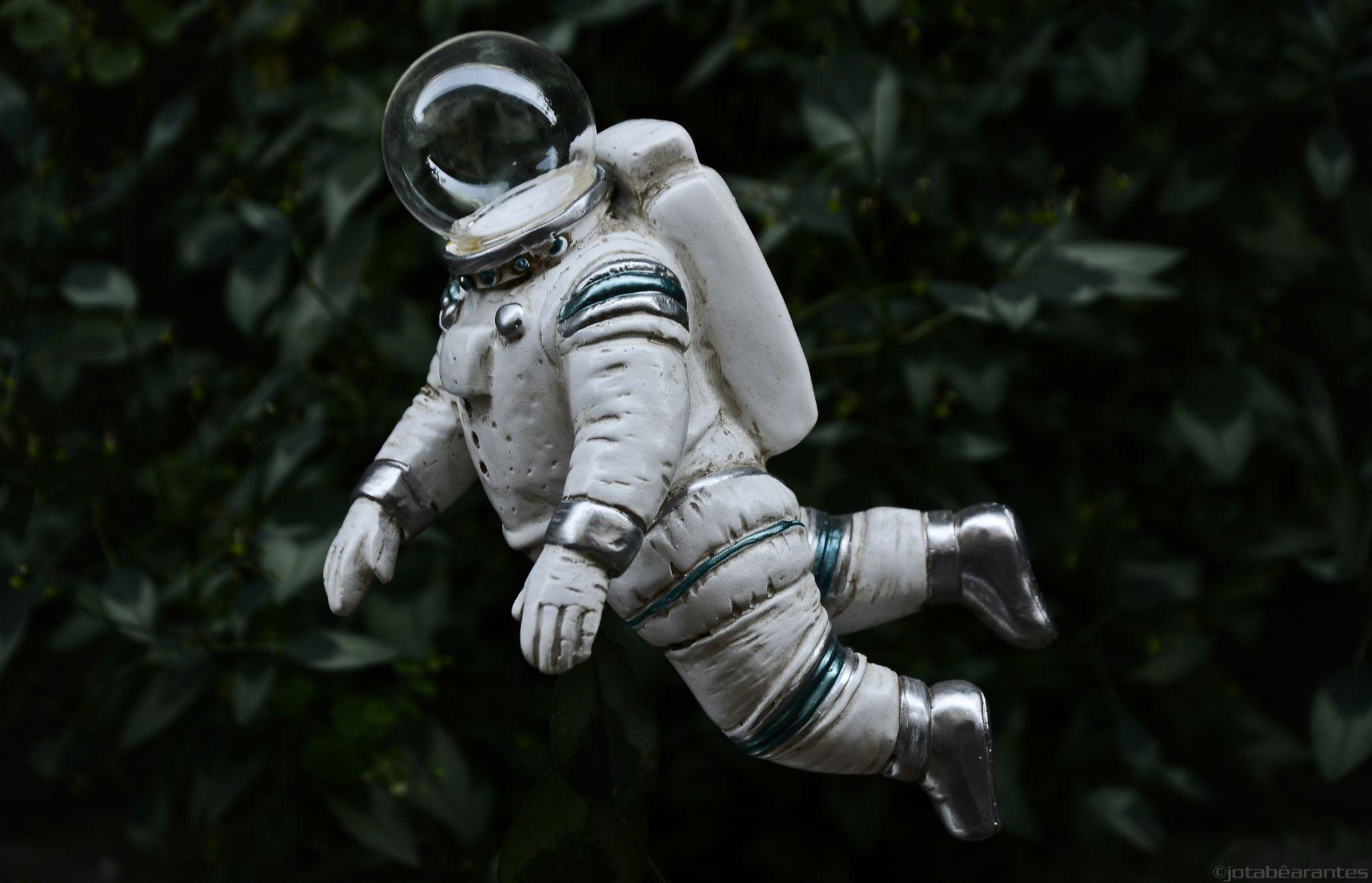 Um asstronauta doidão na floresta by João Arantes