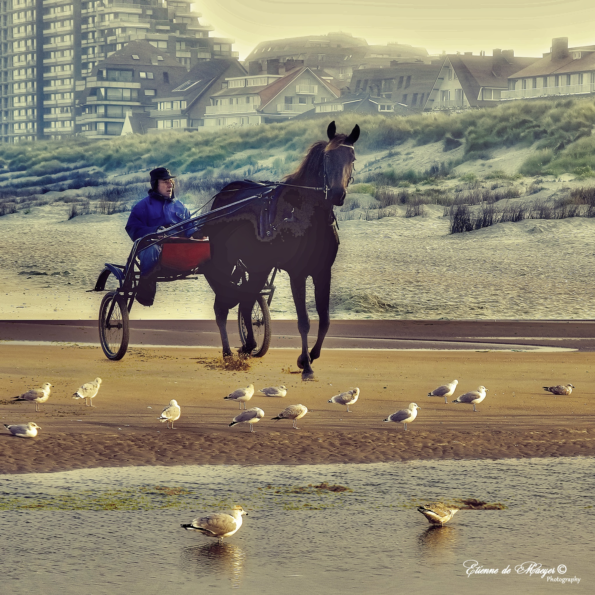 DePanne Beach by Etienne de Maeyer