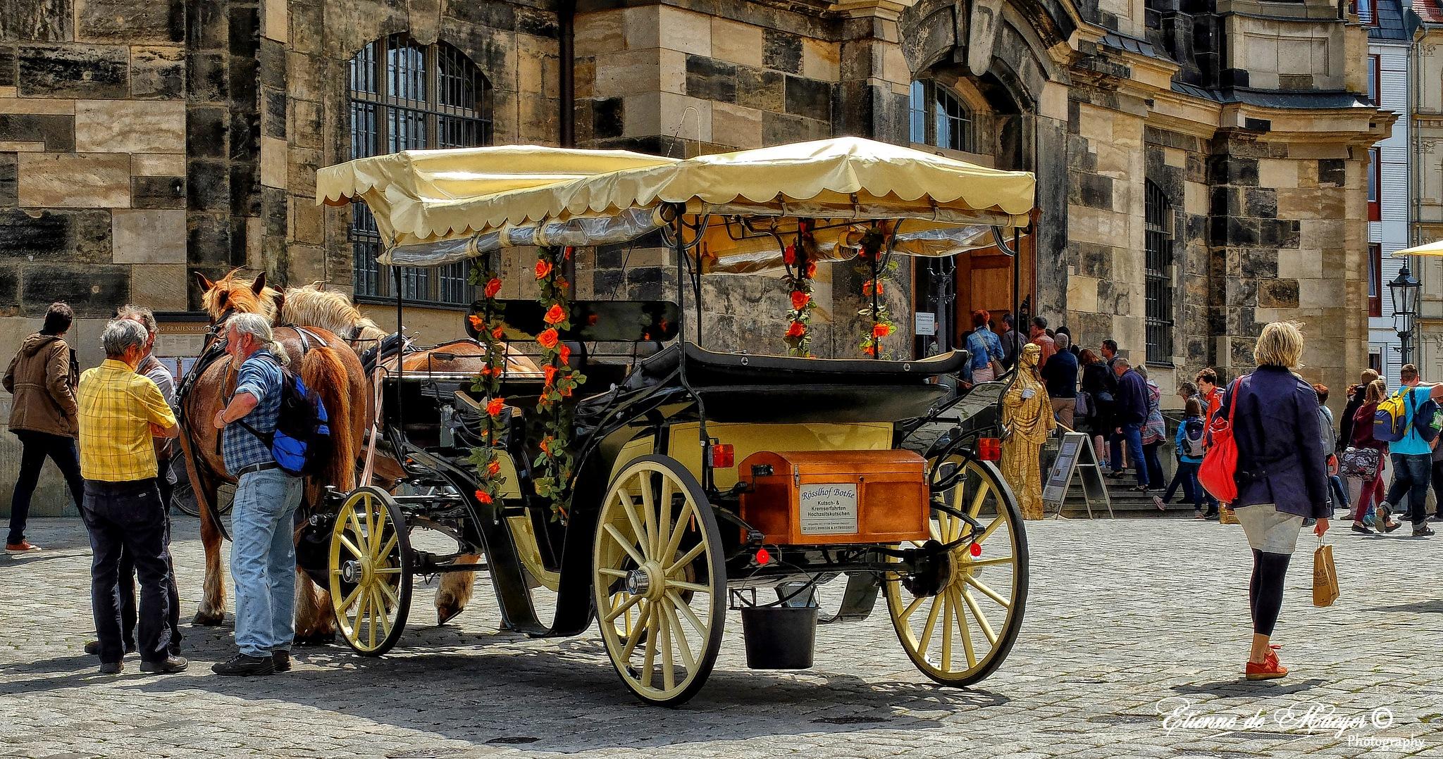 Dresden by Etienne de Maeyer