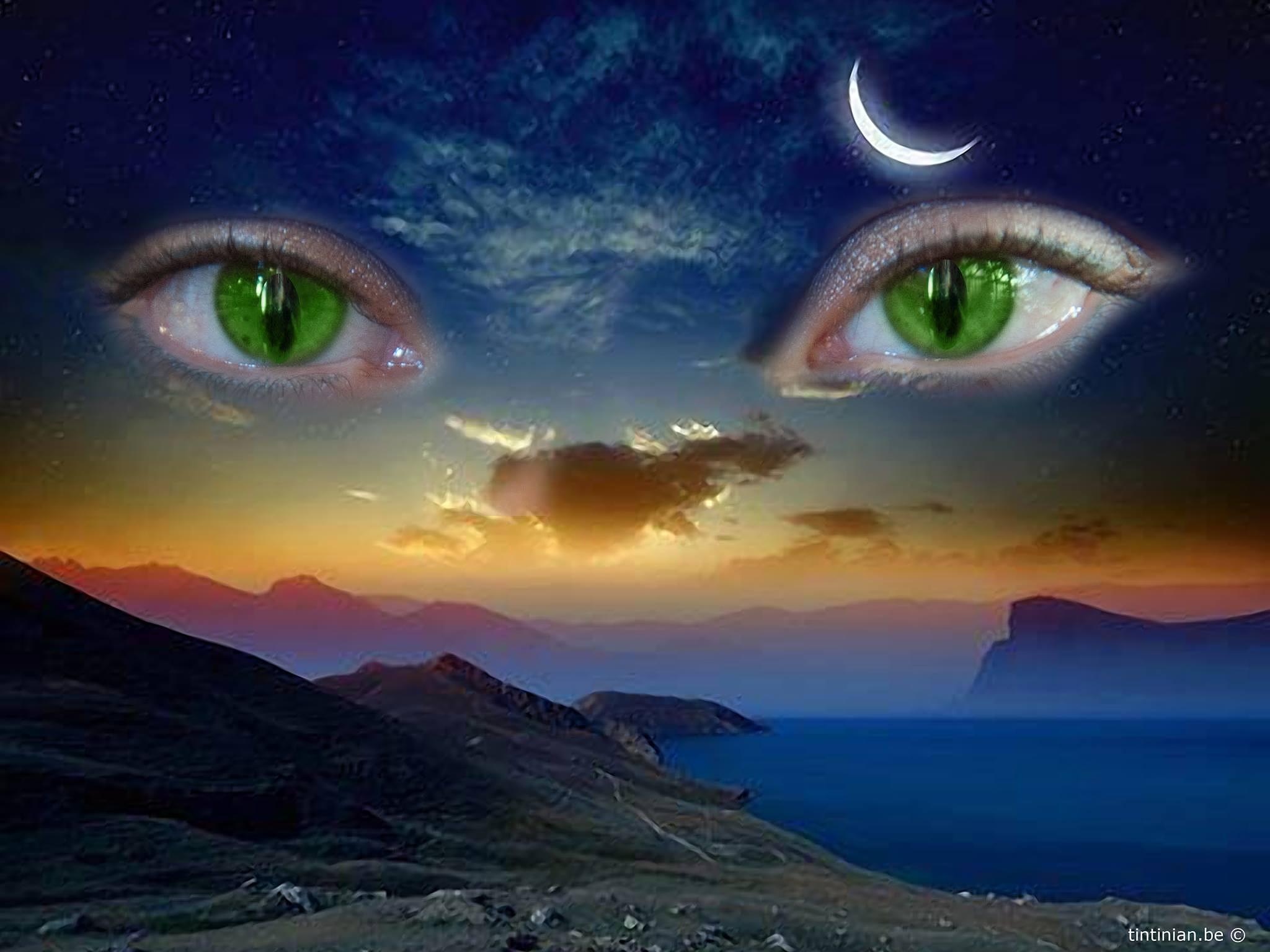 Eyes by Etienne de Maeyer