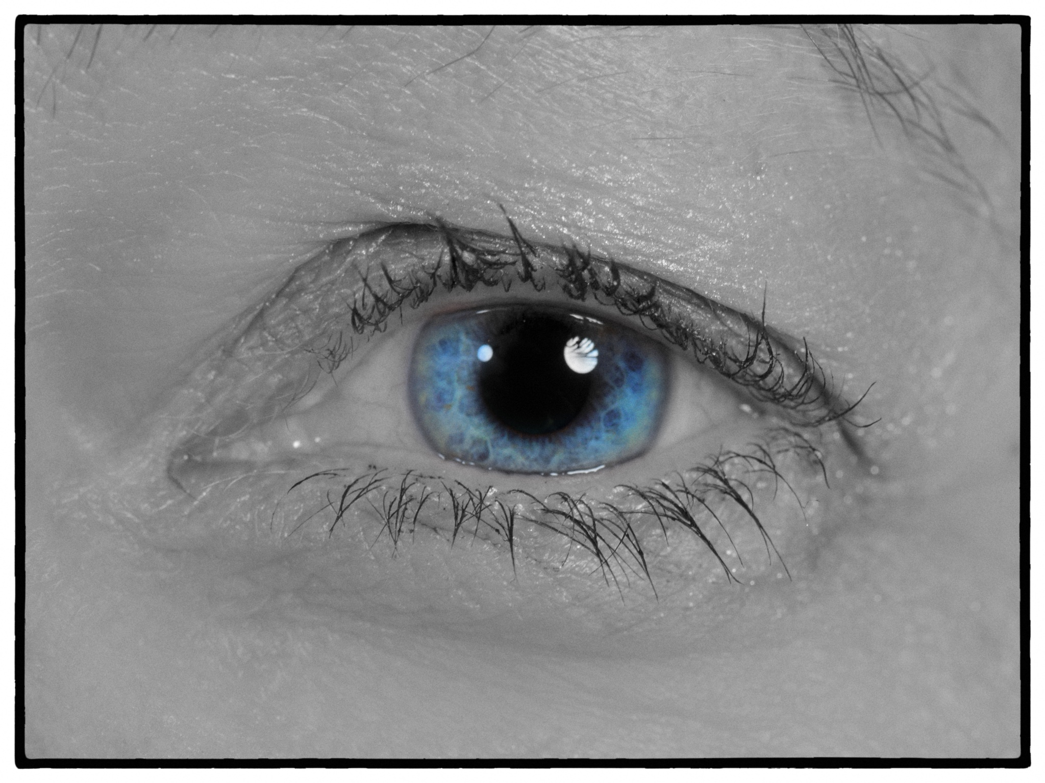 Photo in Fine Art #martine b. #eye #tintinian