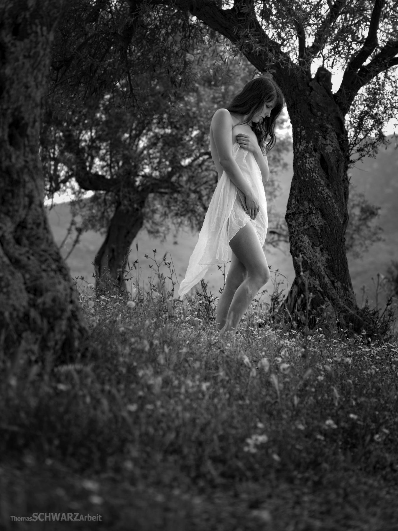 sensual morning ... by thomasschwarzarbeit