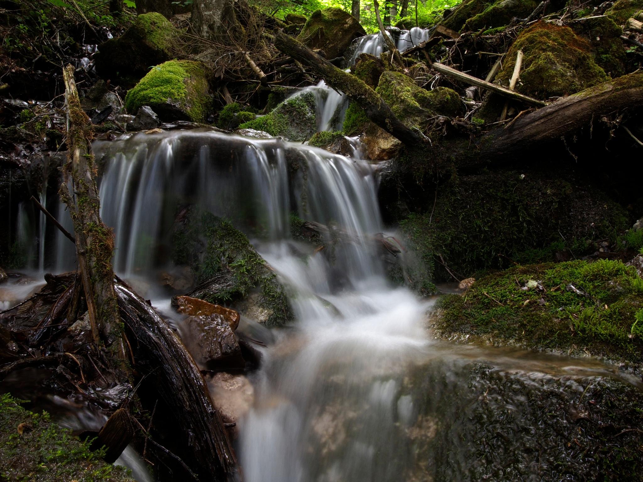little creek 1 by thomasschwarzarbeit