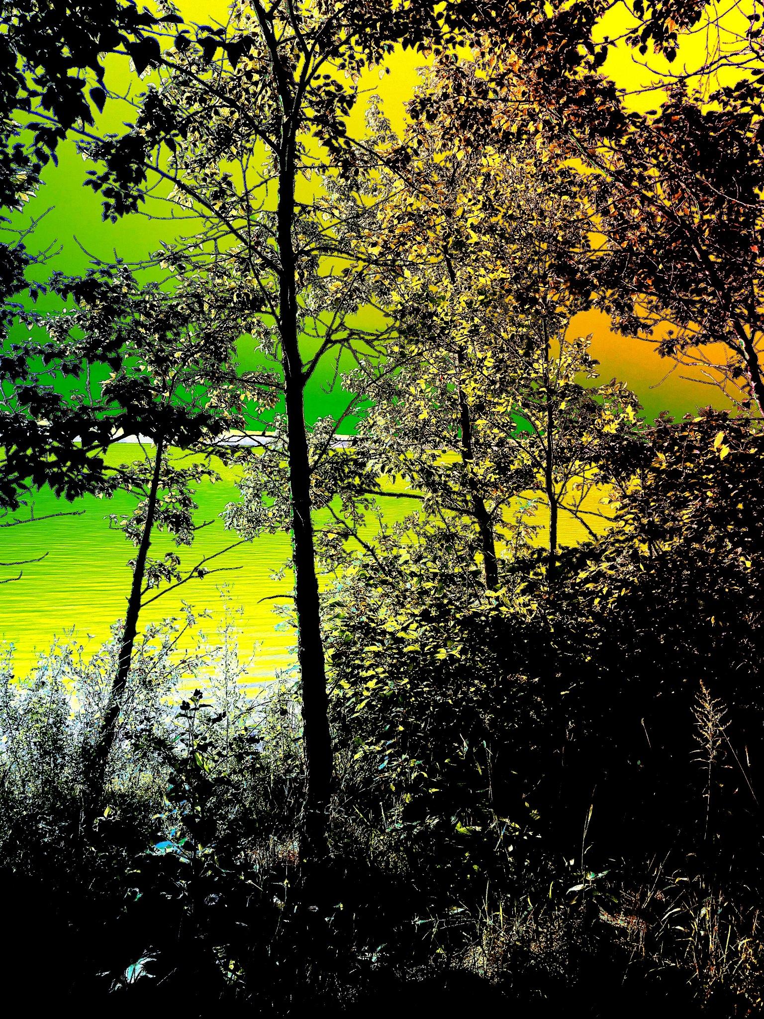 Untitled by Hugh MacLachlan