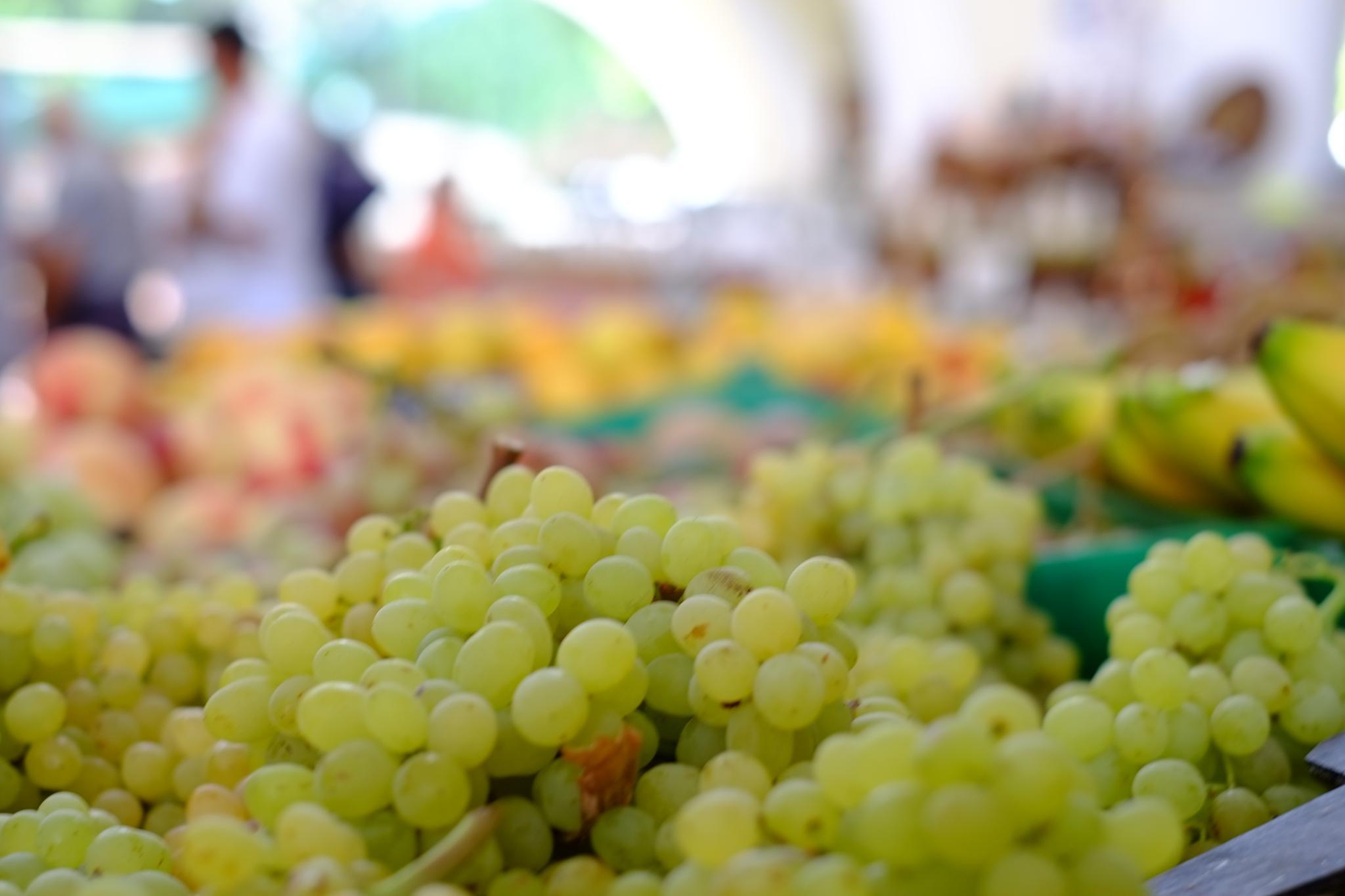 Grapes by peterkryzun